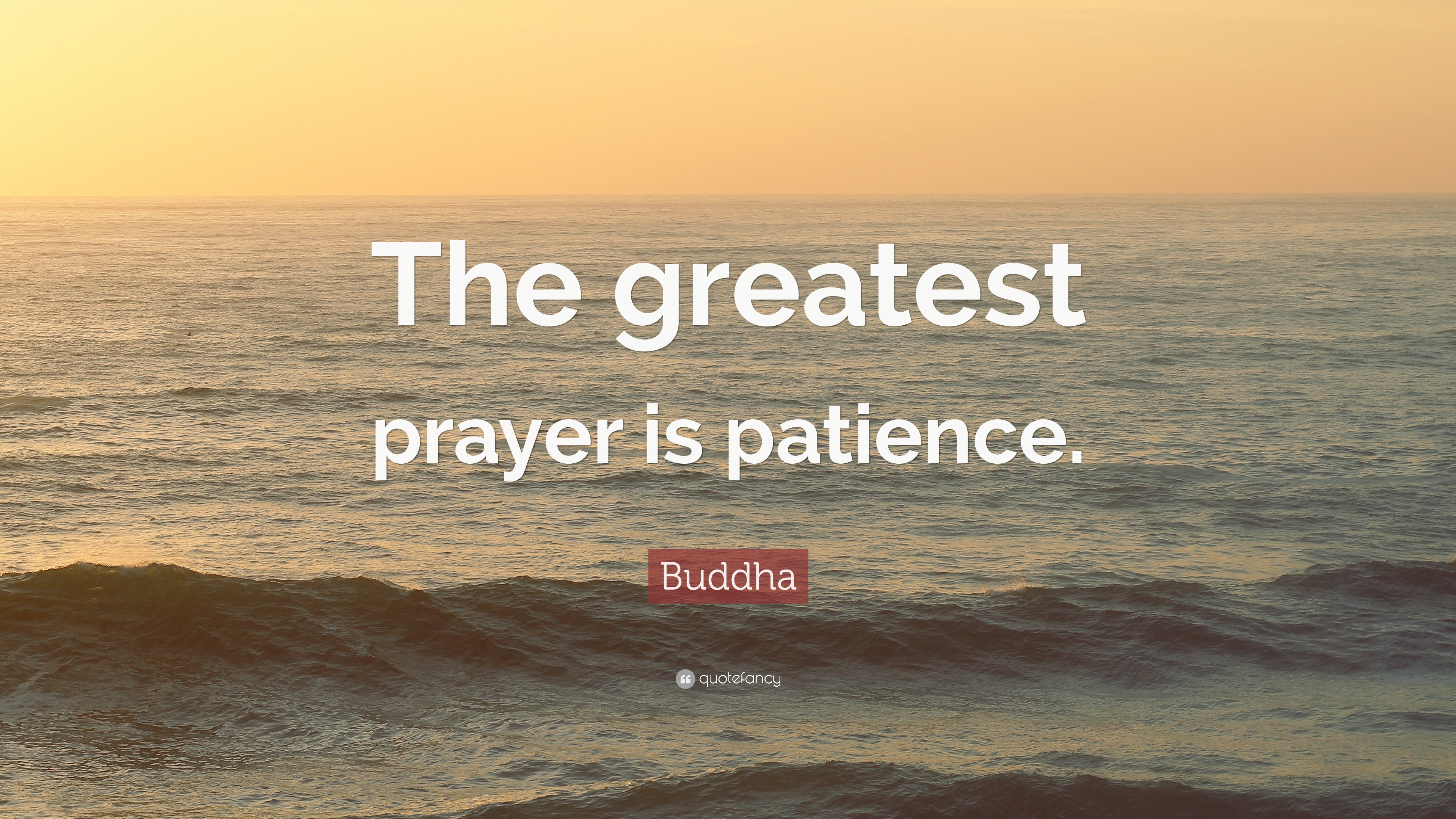 Buddha Quote The Greatest Prayer Is Patience 49 Wallpapers