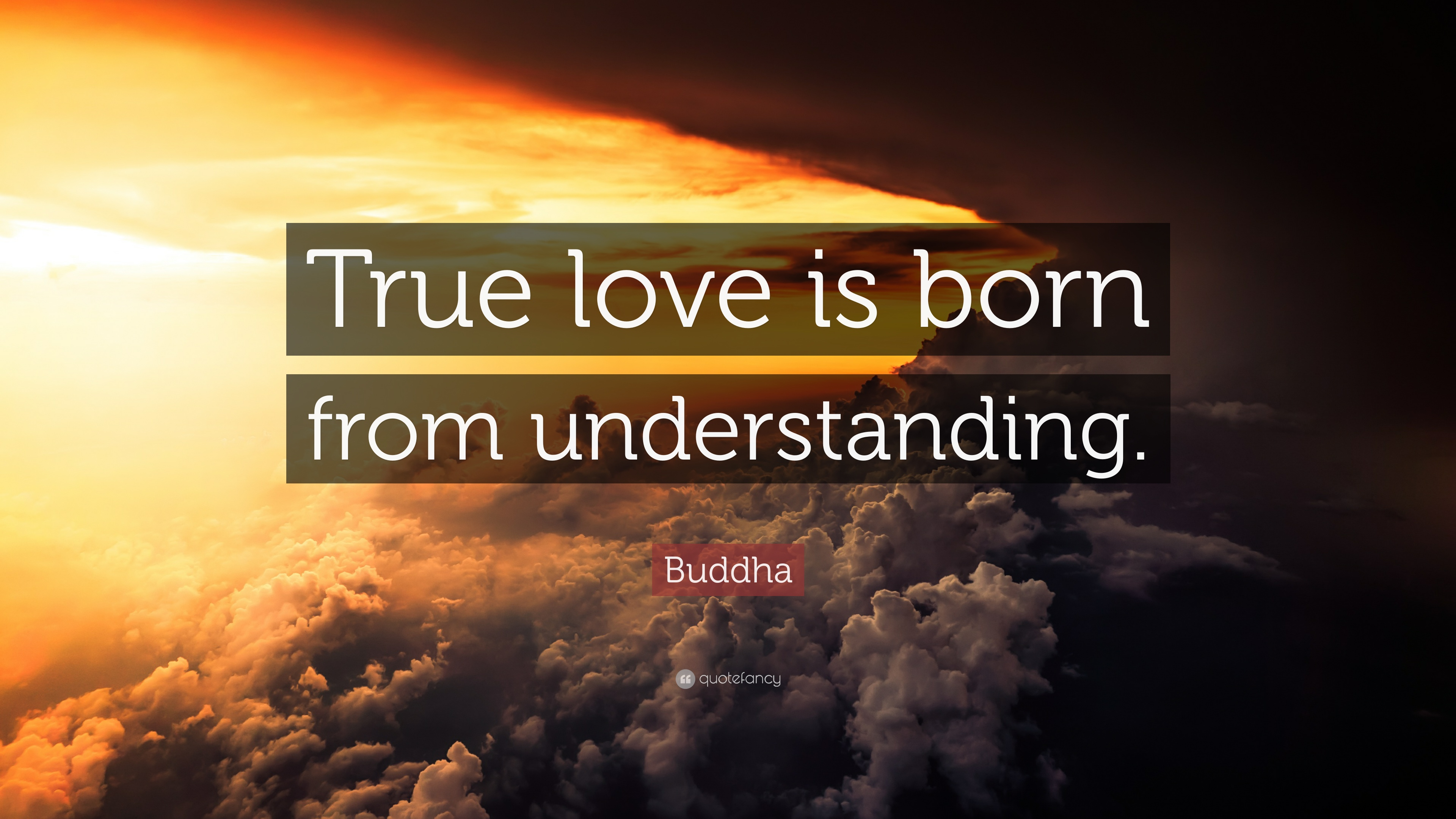 "Buddha Quotes About Love Buddha Quote ""True Love Is Born From Understanding."" 12"