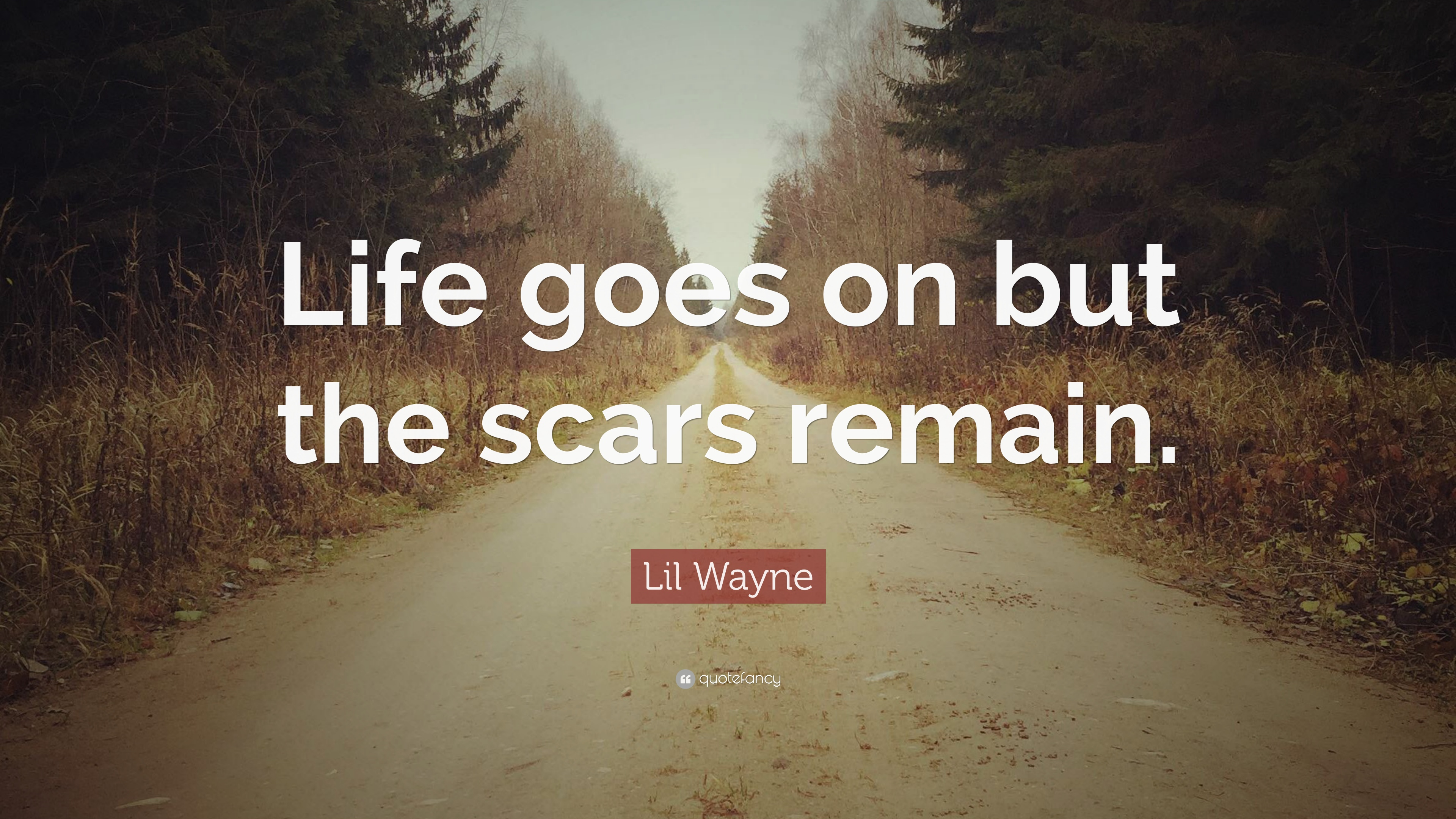 Lil Wayne Quote Life Goes On But The Scars Remain