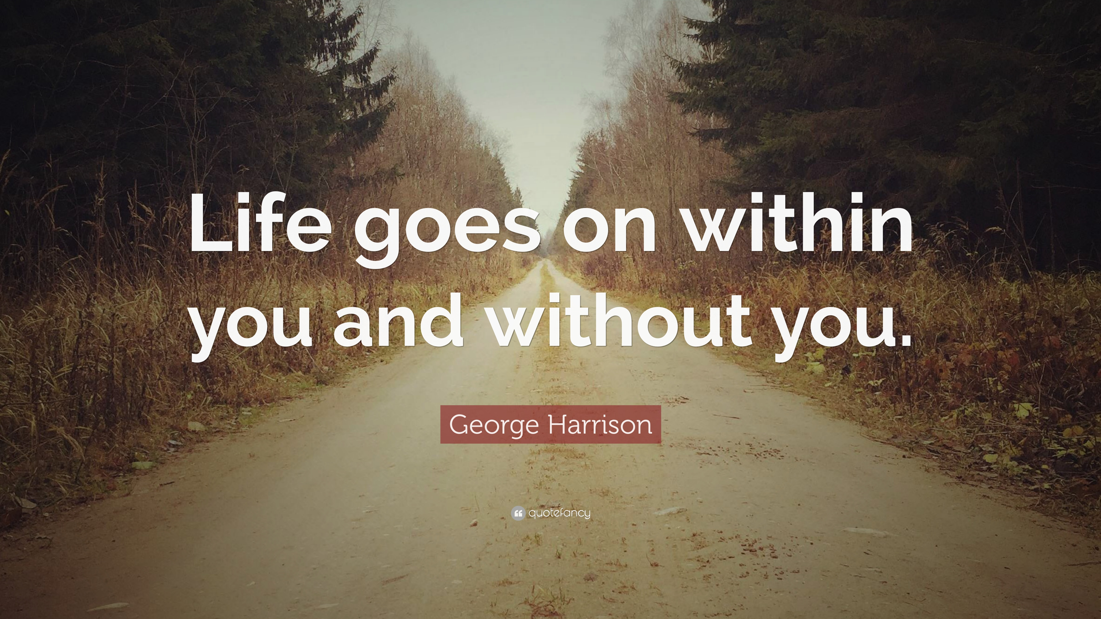 """George Harrison Quote: """"Life goes on within you and without"""