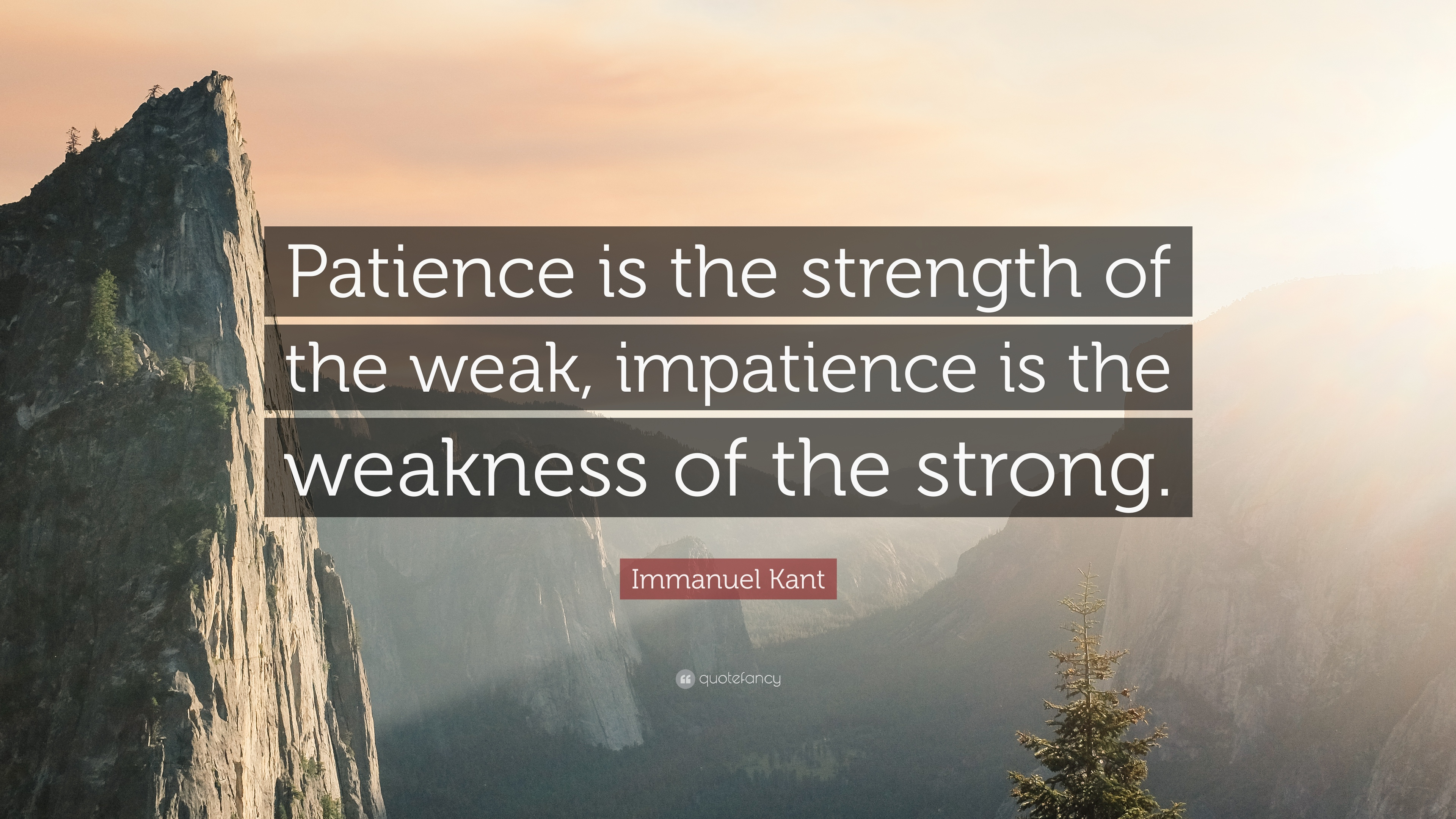 """Immanuel Kant Quote: """"Patience is the strength of the weak"""