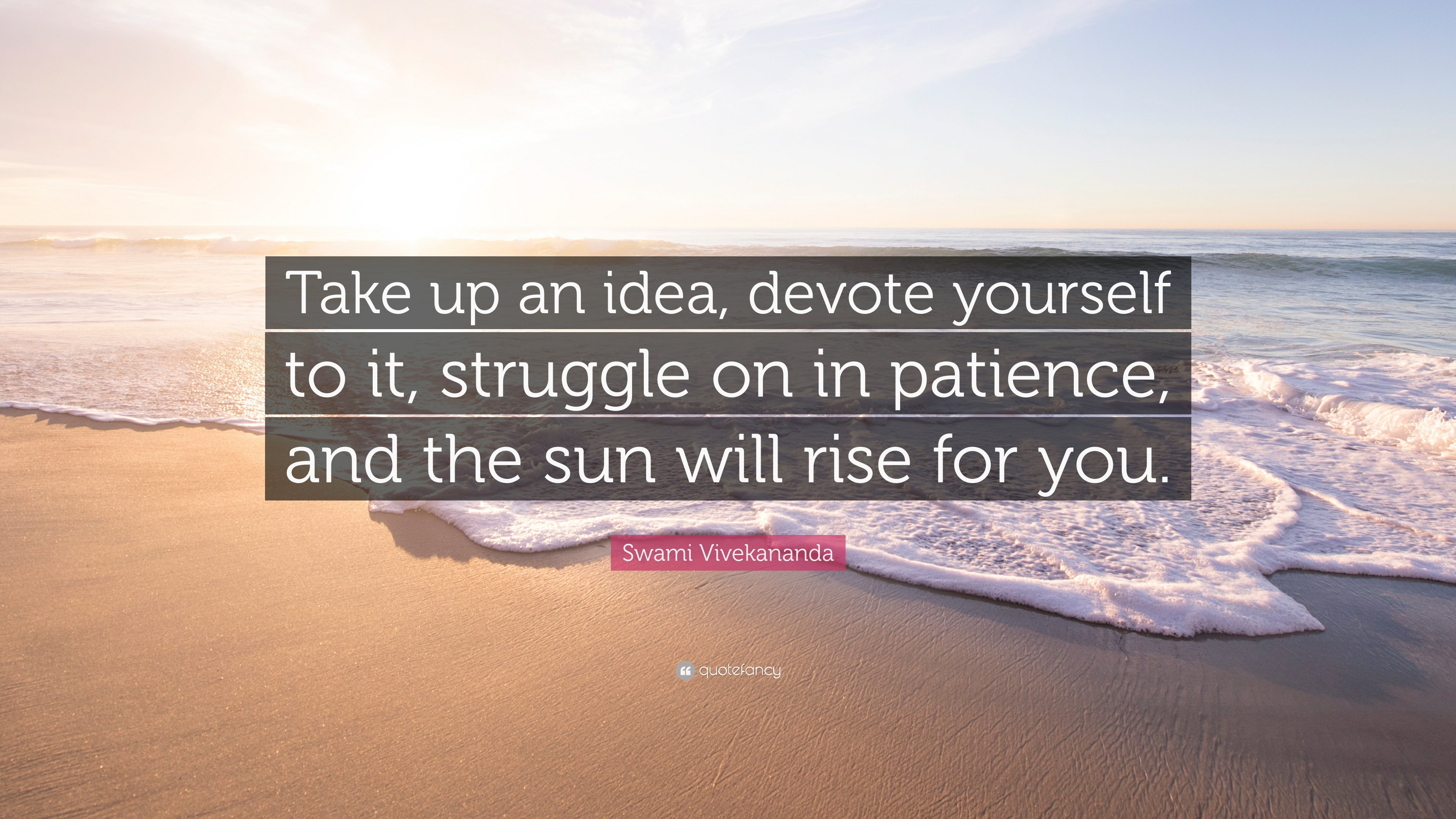 Patience Quotes: U201cTake Up An Idea, Devote Yourself To It, Struggle On