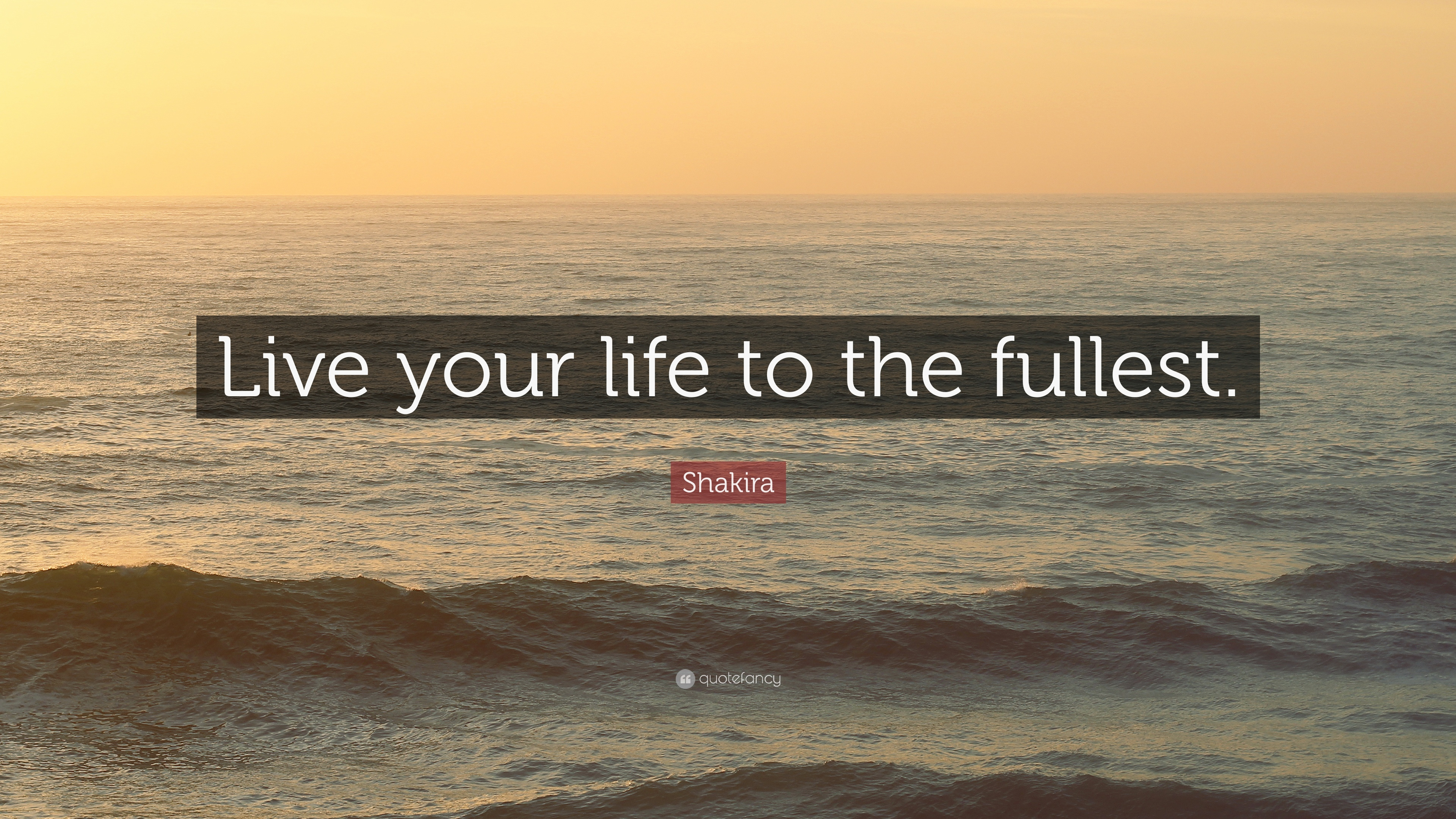 "Live Life To The Fullest Quotes Alluring Shakira Quote ""Live Your Life To The Fullest."" 12 Wallpapers ."