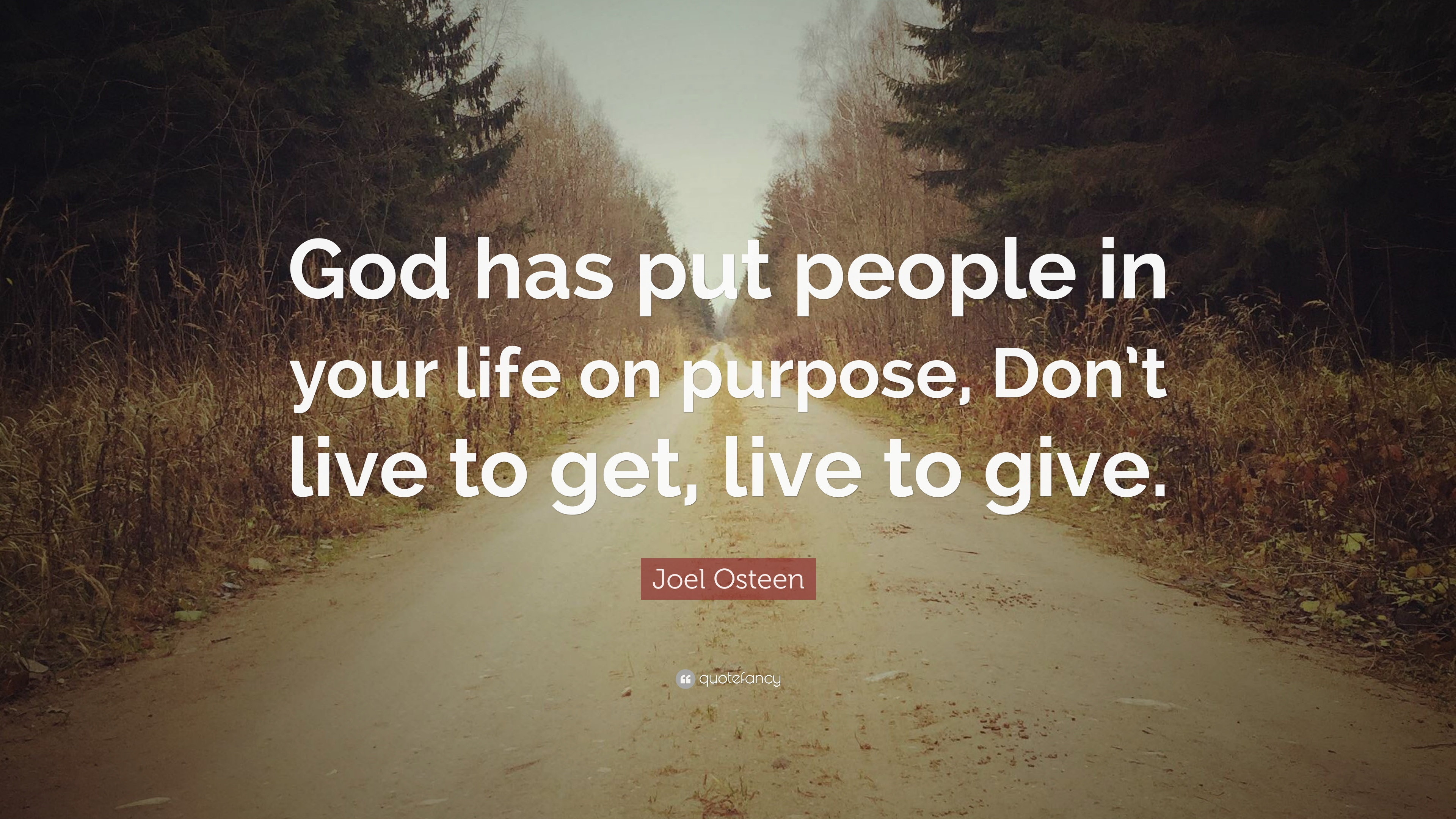 Joel Osteen Quote: God has put people in your life on