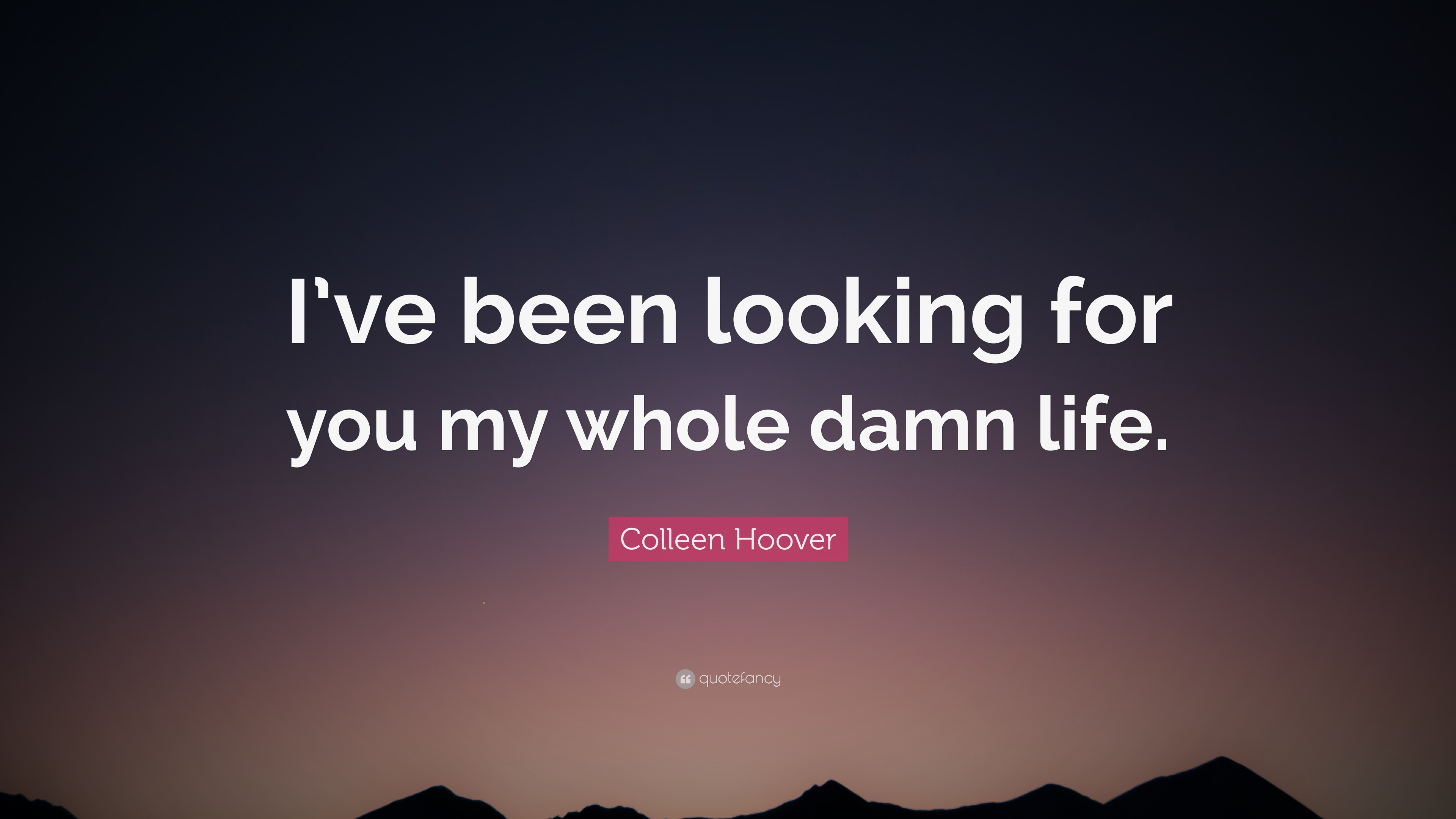 "Colleen Hoover Quote: ""I've Been Looking For You My Whole"