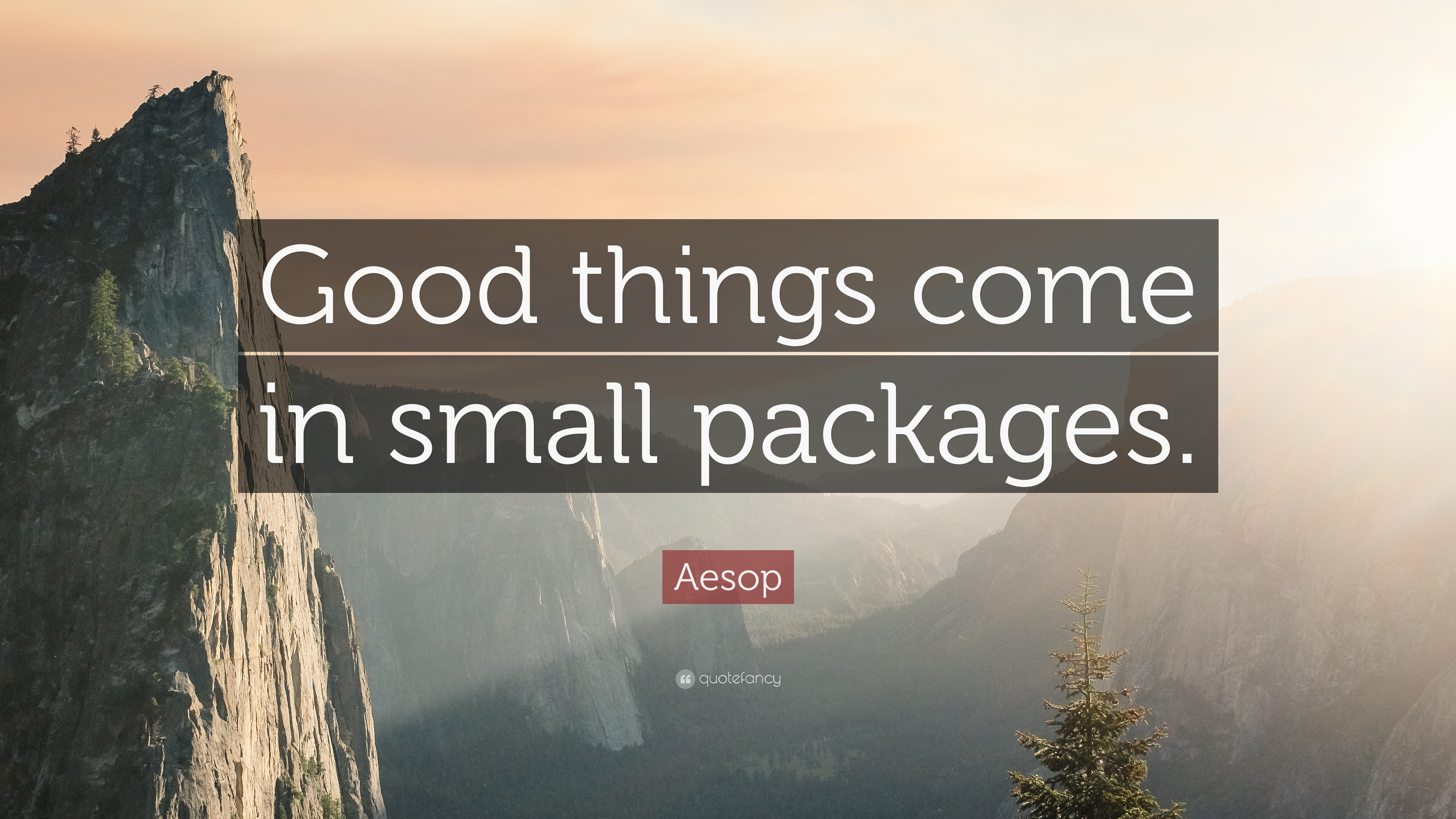 Aesop Quote Good Things Come In Small Packages 12 Wallpapers