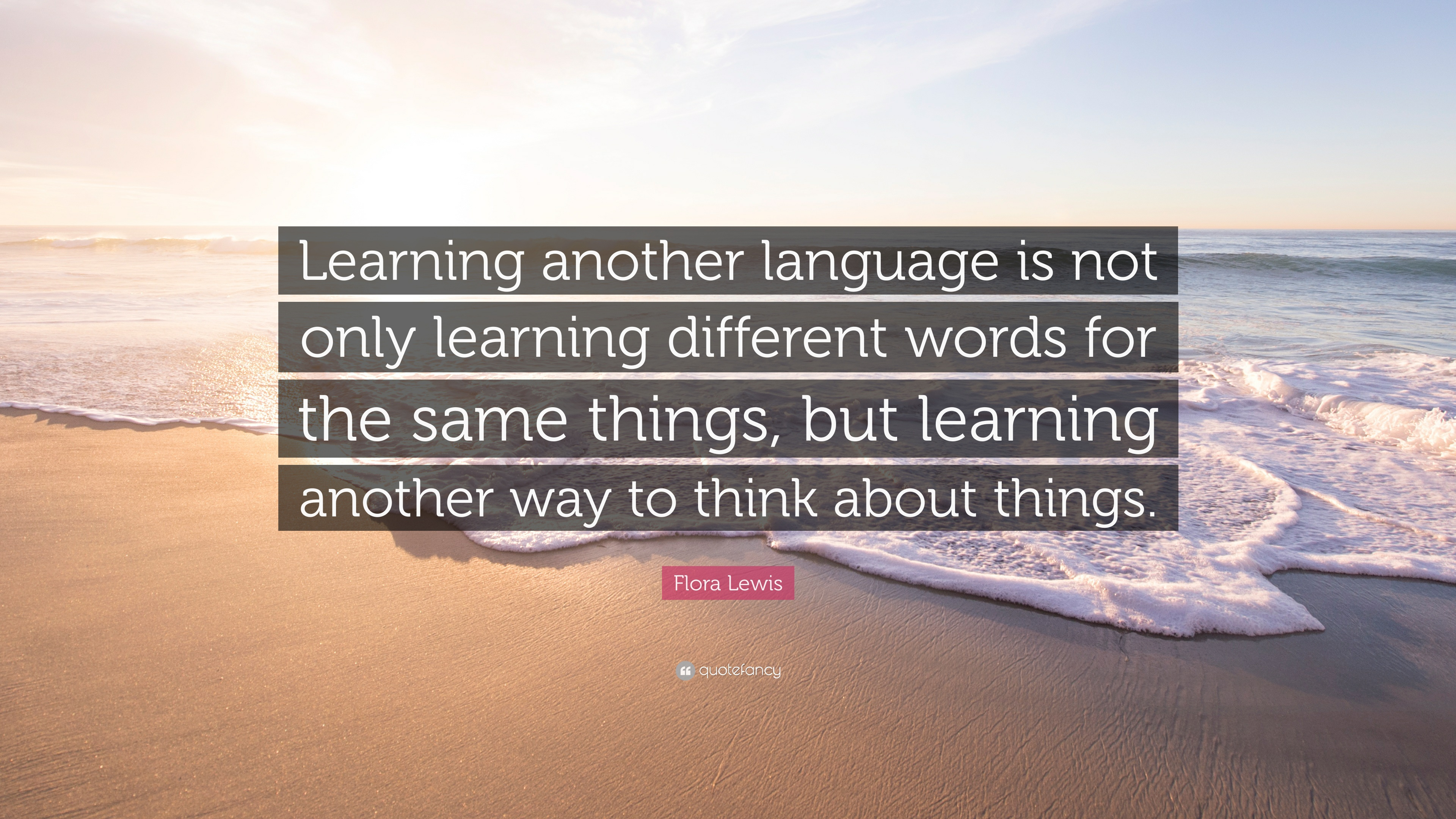 Learning a language – 10 things you need to know ...