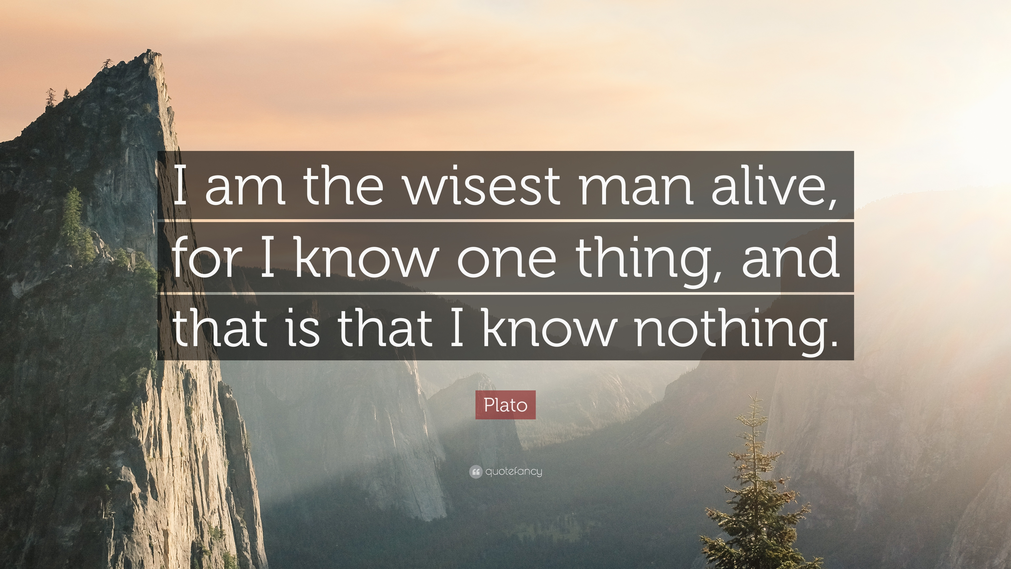 Plato Quote I Am The Wisest Man Alive For I Know One Thing And