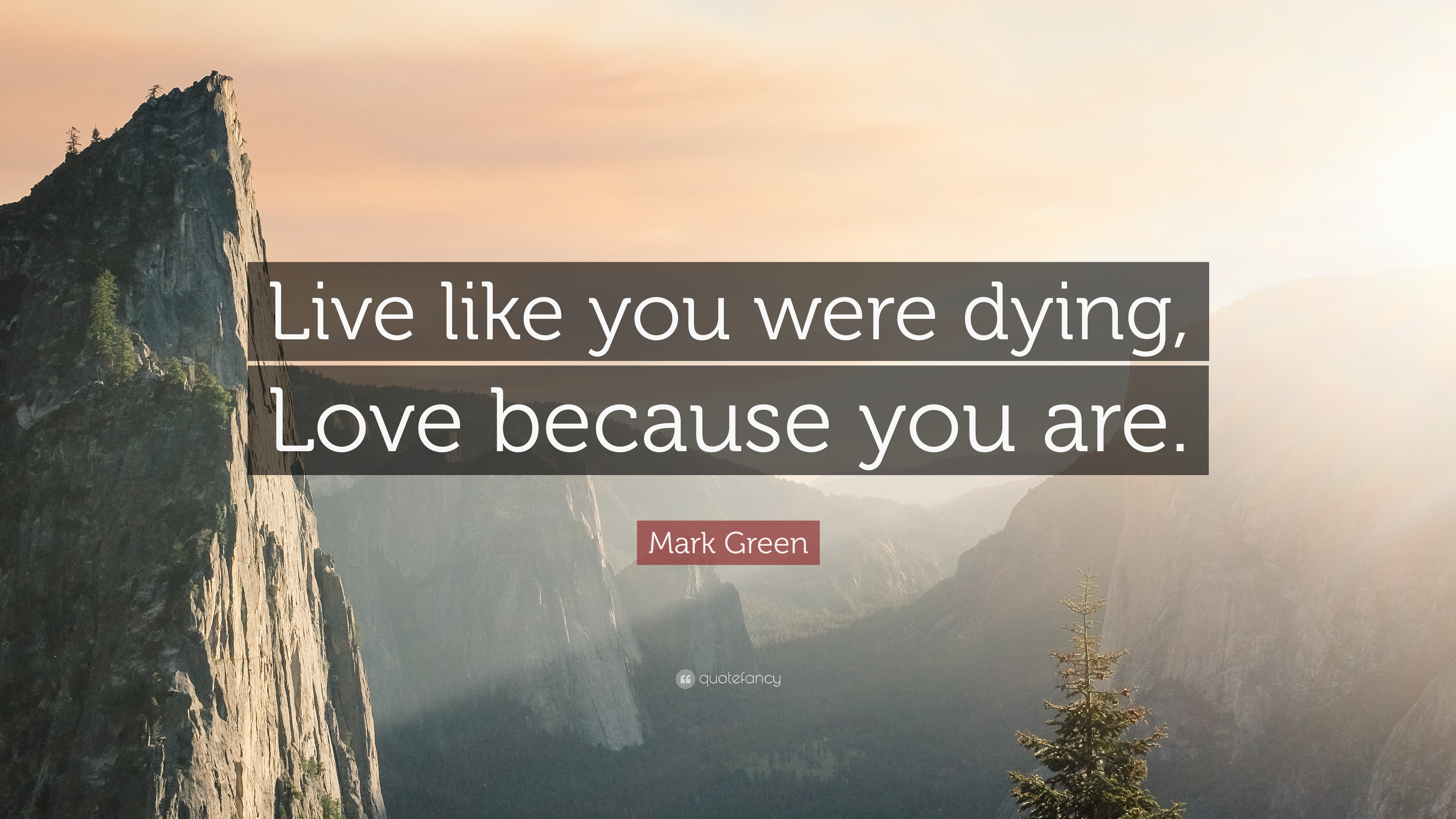 Live Like Your Dying Quotes Wwwpicsbudcom