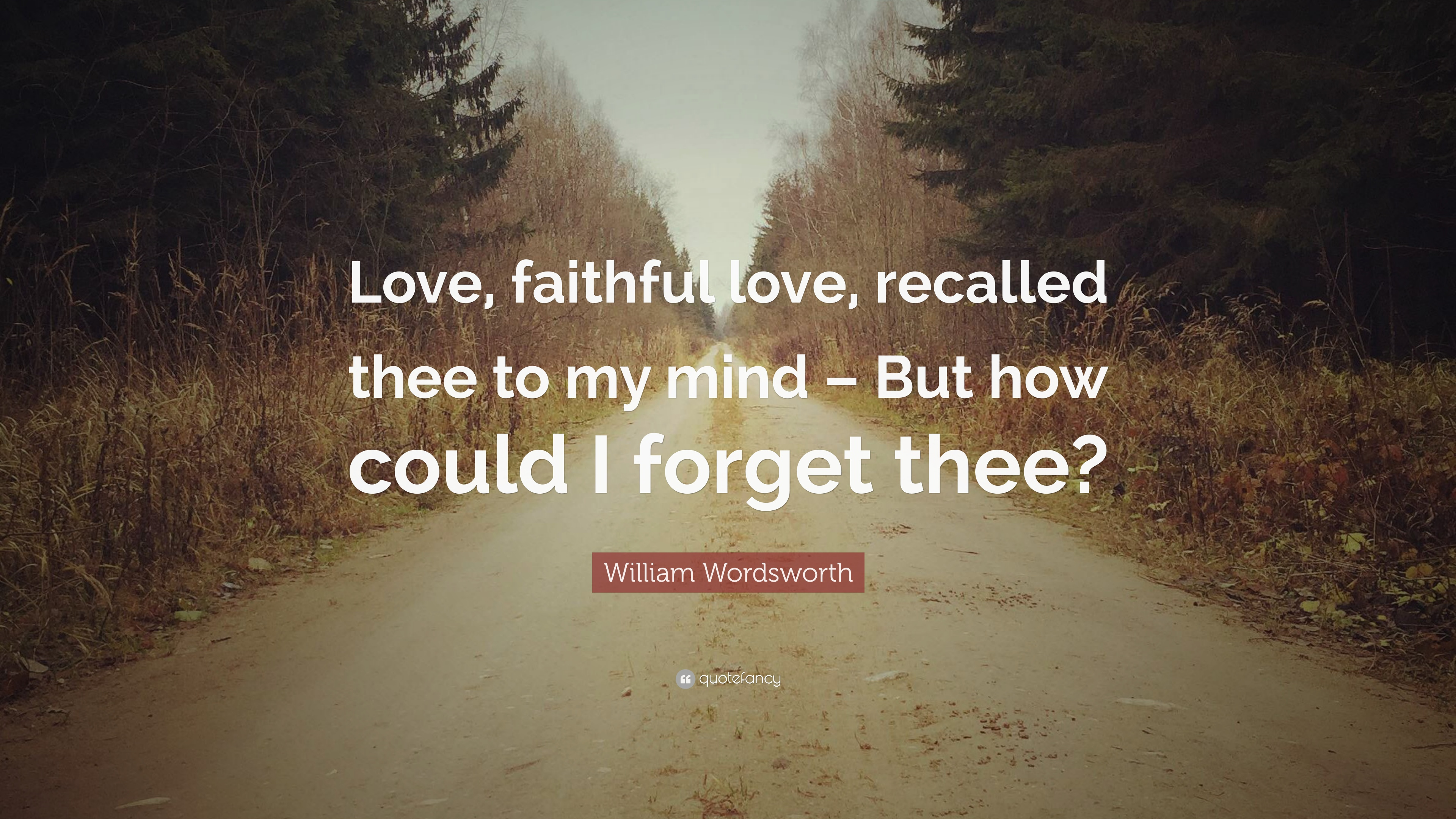 my most faithful lovers Man may be a thinking animal, but much of what men do, maybe even most of  what they do,  what men really want is to win the love of a princess (or of a girl  who  solomon would have found happiness had he been faithful to his  shunamite.