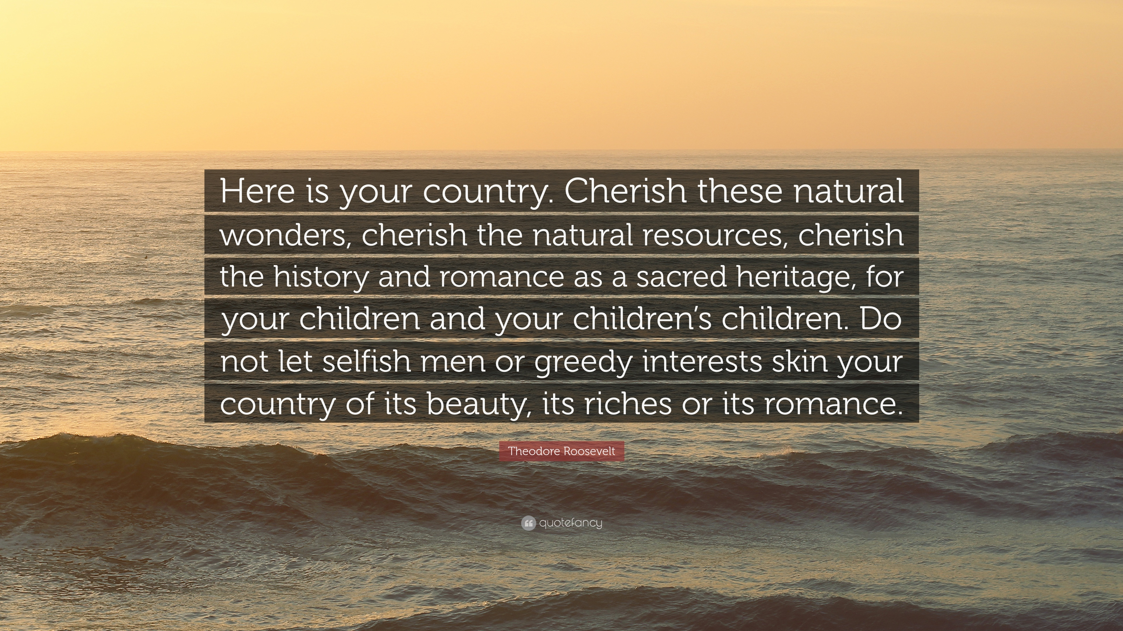 Theodore Roosevelt Quote Here Is Your Country Cherish These