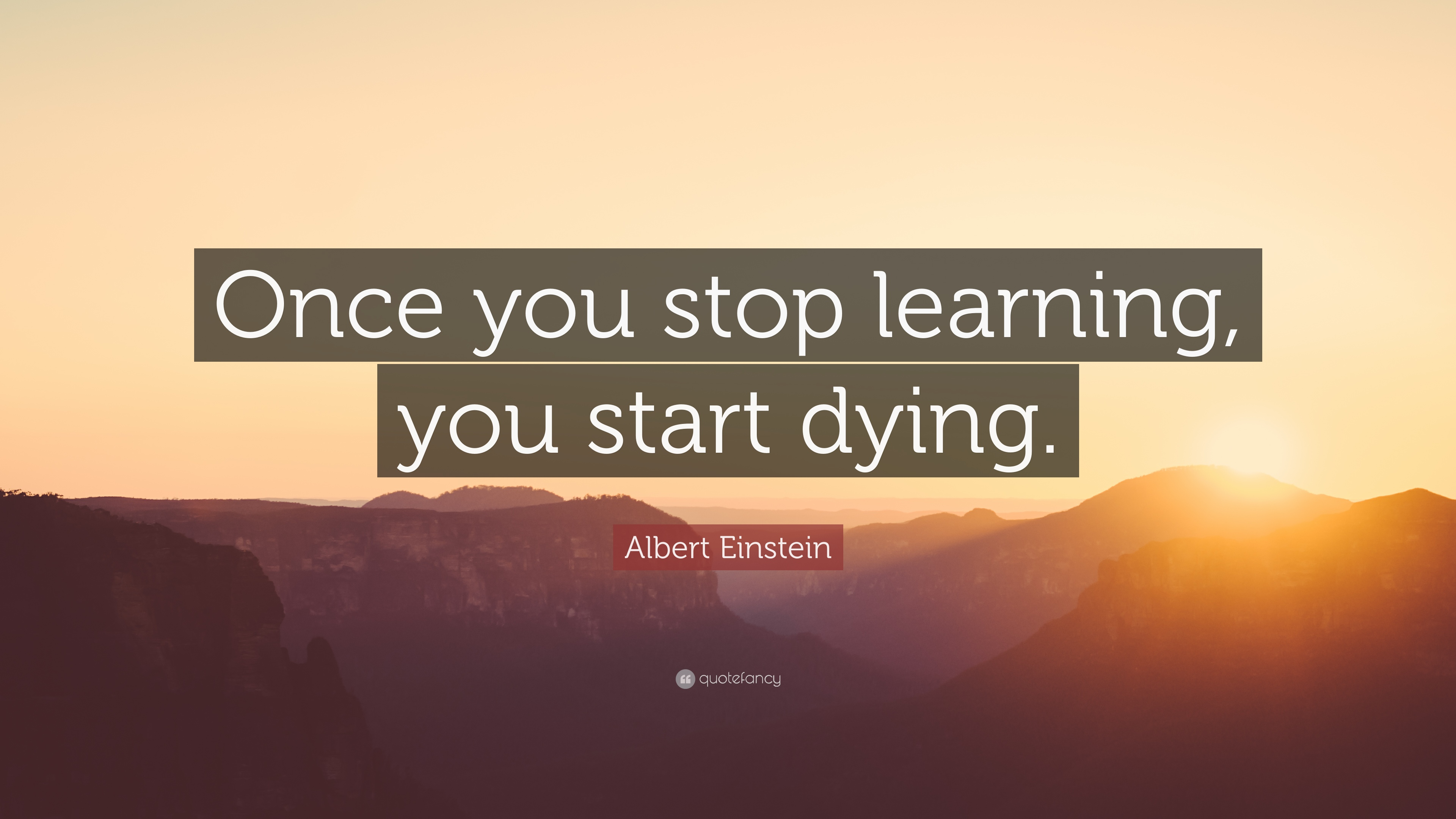 Albert Einstein Quote Once You Stop Learning You Start Dying