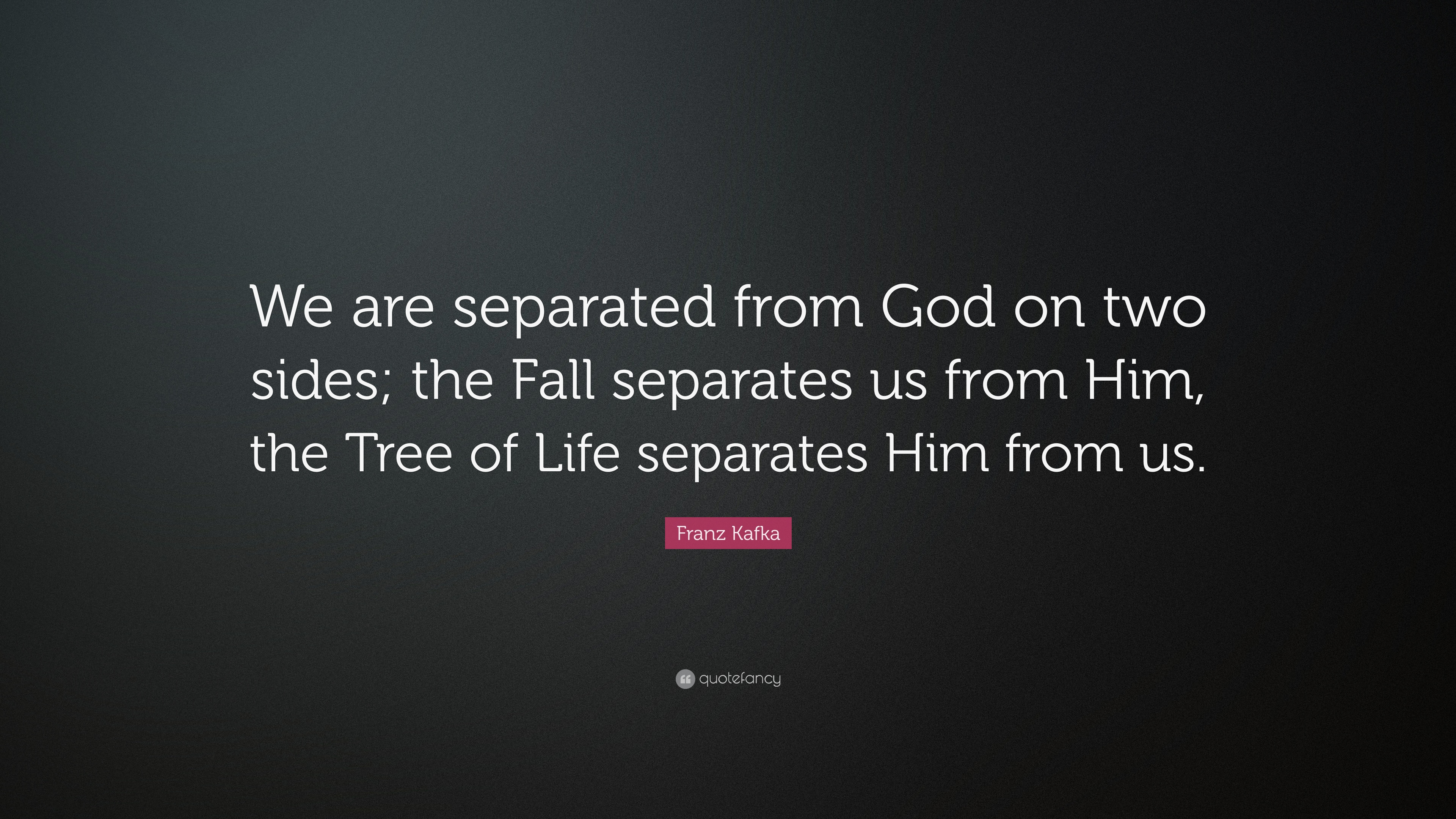 """Kafka Quote Meaning Of Life: Franz Kafka Quote: """"We Are Separated From God On Two Sides"""
