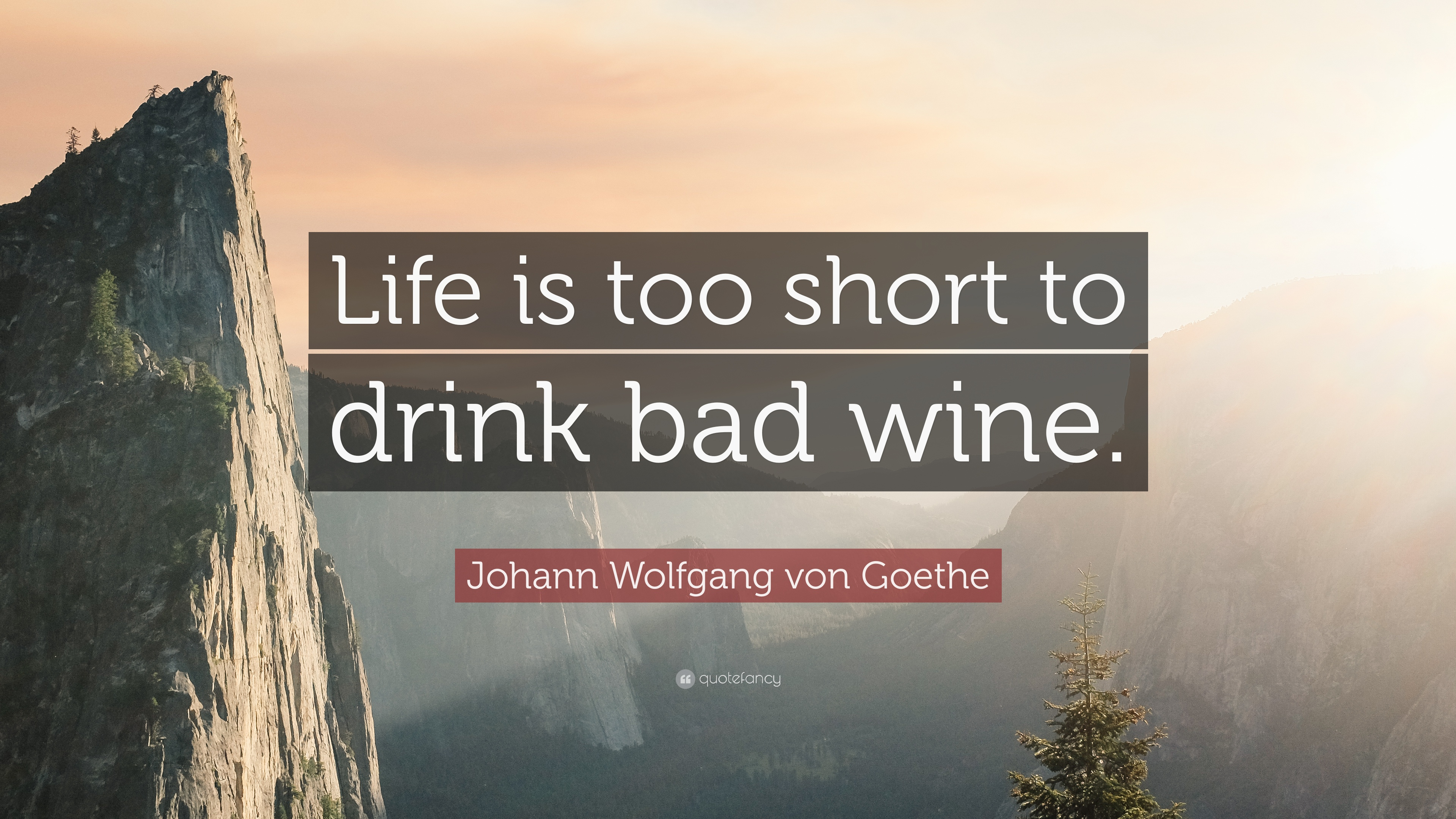 Johann Wolfgang Von Goethe Quote Life Is Too Short To Drink Bad