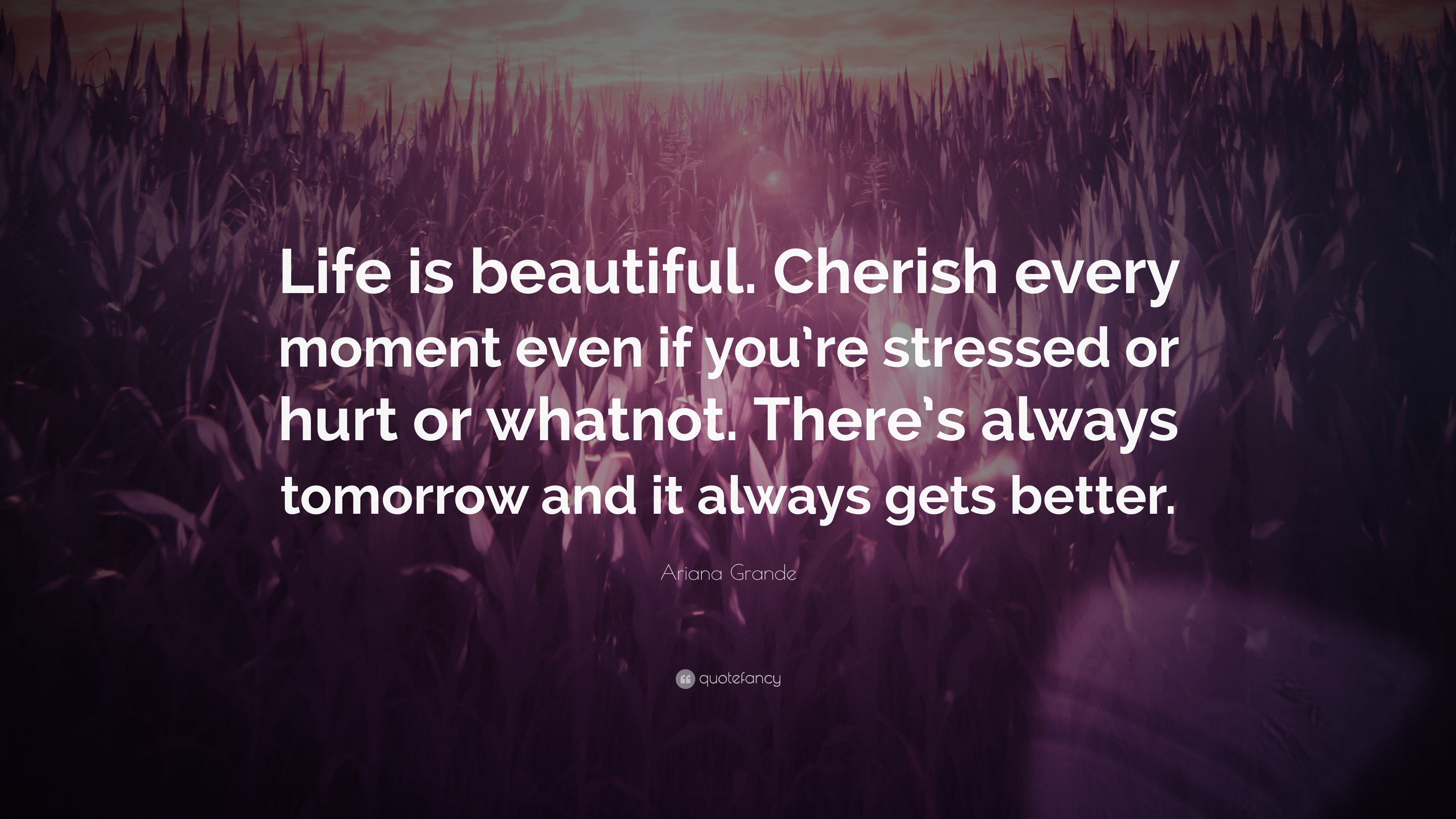 "Ariana Grande Quote: ""Life Is Beautiful. Cherish Every"