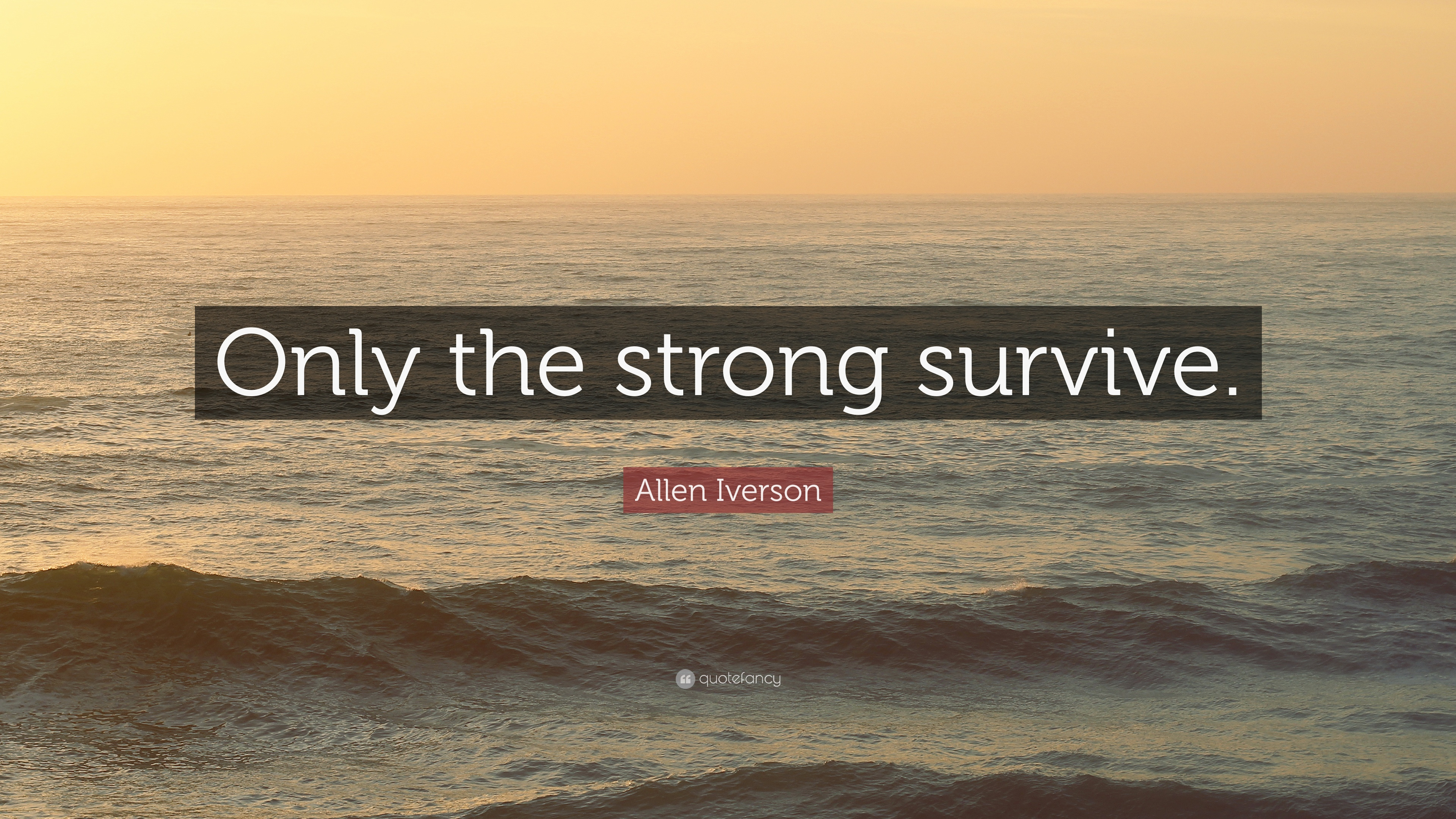 """Allen Iverson Quote: """"Only the strong survive."""" (12 wallpapers"""