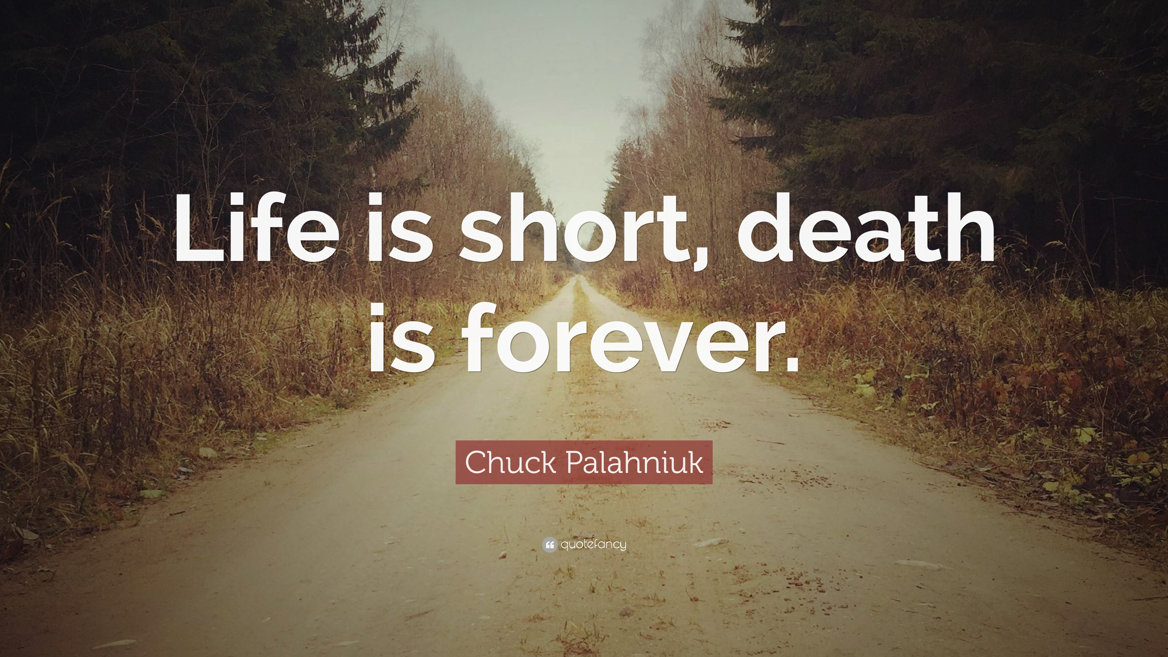 "Life Death Quotes Captivating Chuck Palahniuk Quote ""Life Is Short Death Is Forever."" 12"