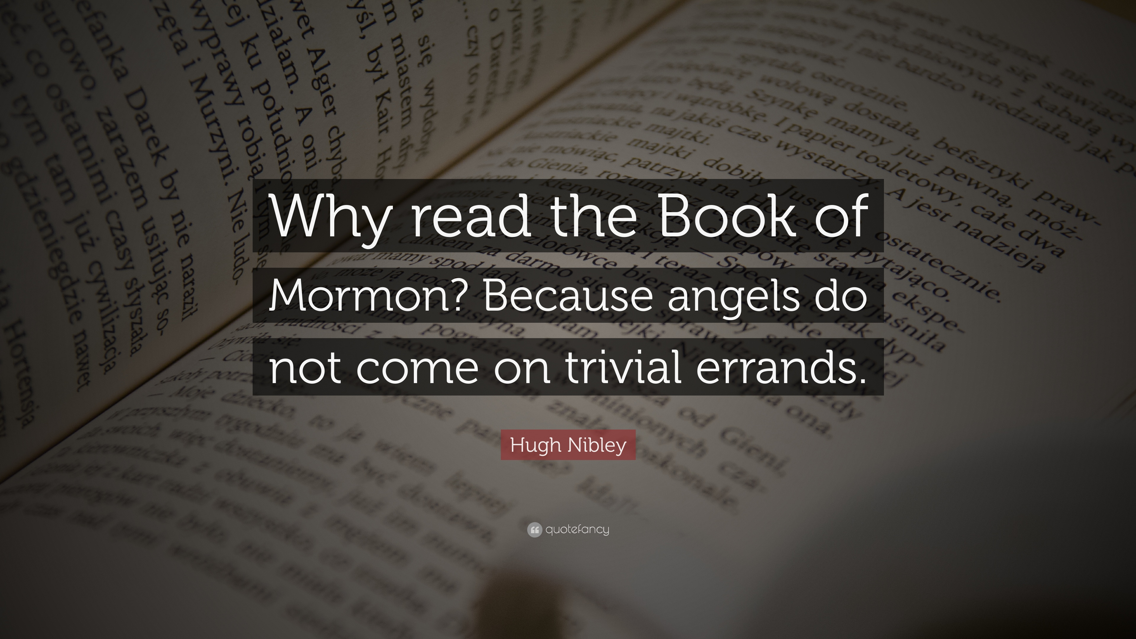 "Hugh Nibley Quote: ""Why read the Book of Mormon? Because angels do"