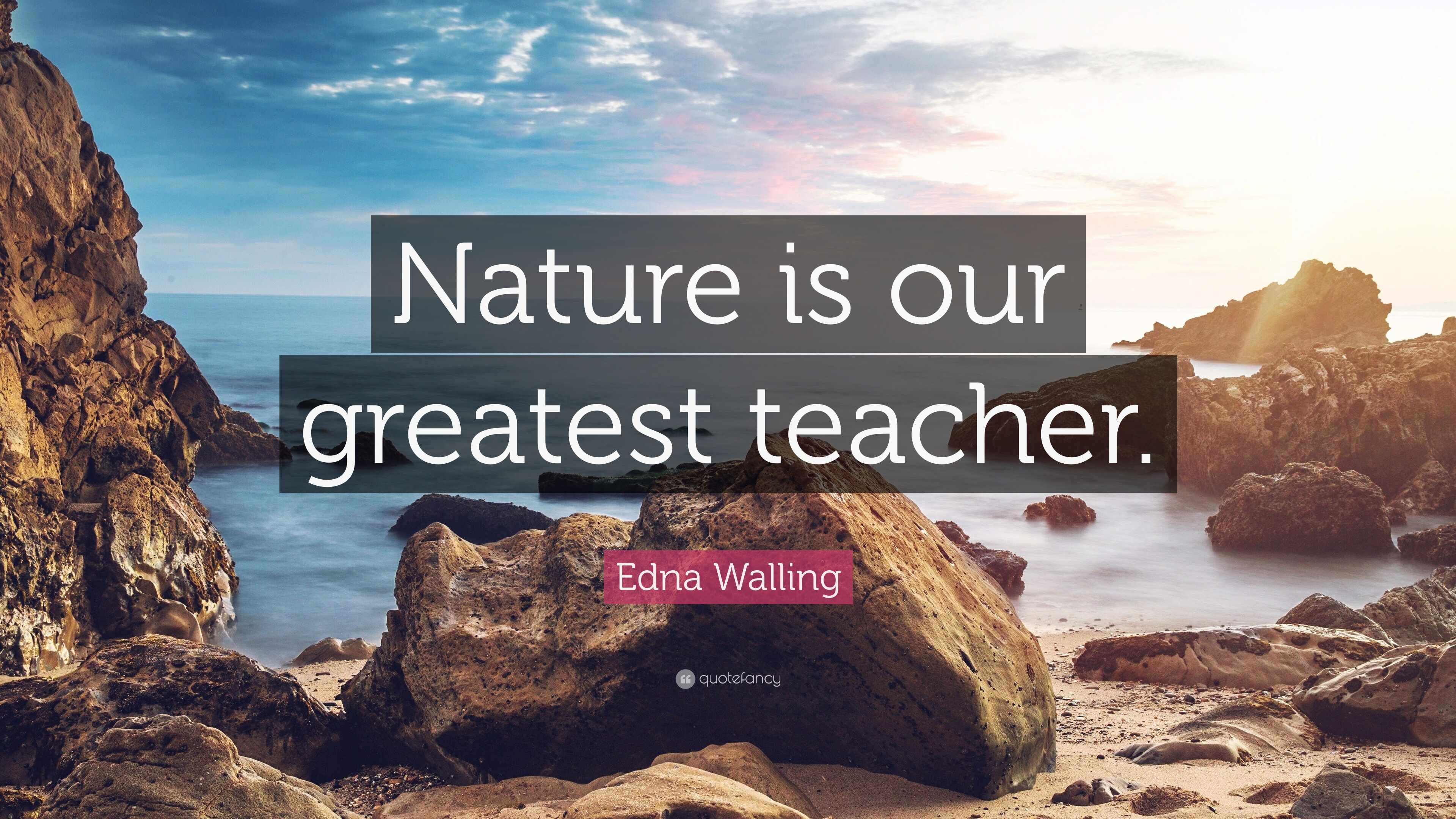 nature is the best teacher drawing
