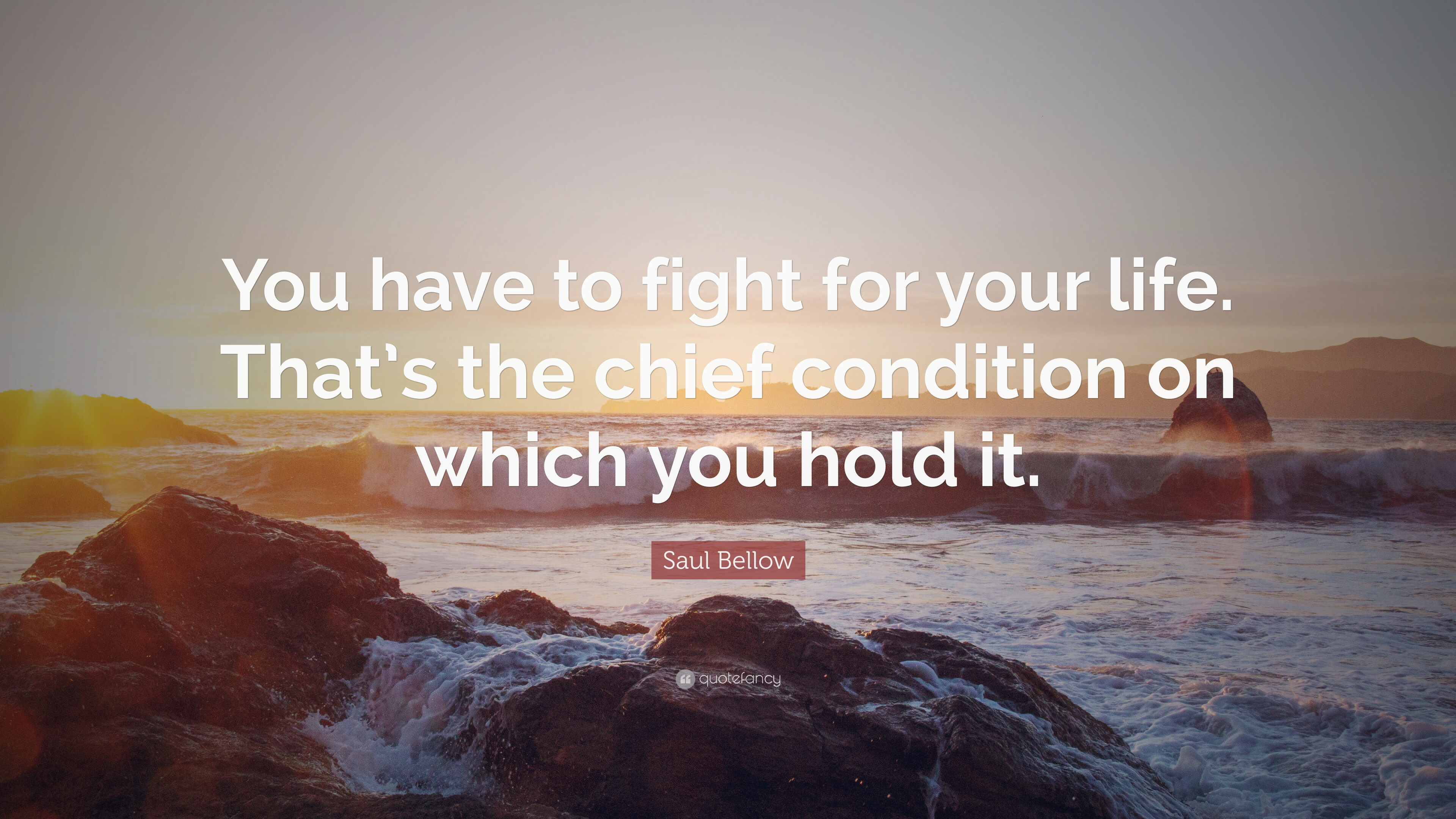 "Fight For Your Life Quotes Saul Bellow Quote ""You Have To Fight For Your Lifethat's The"