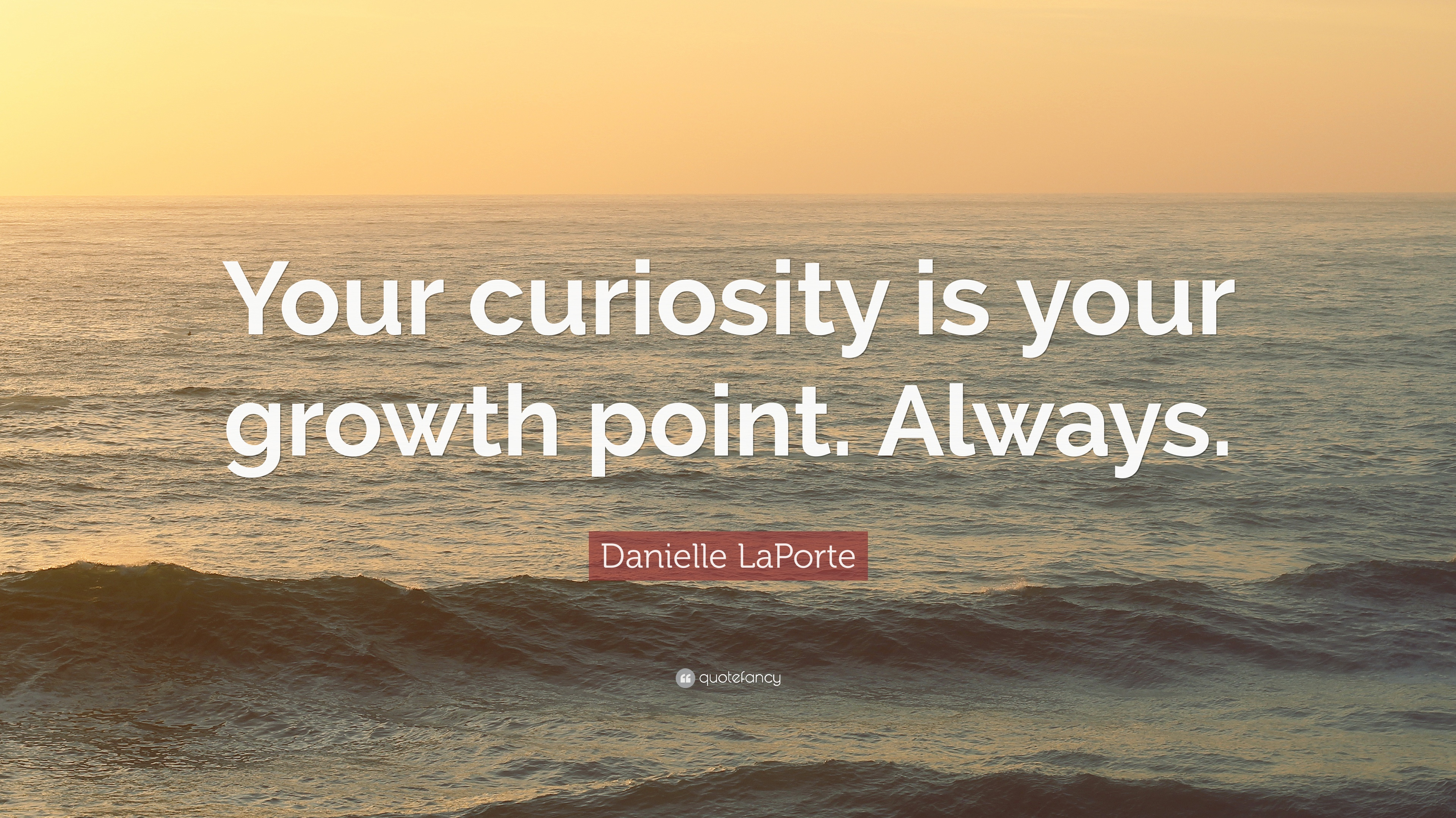 "Curiosity Quotes Danielle Laporte Quote ""Your Curiosity Is Your Growth Point"