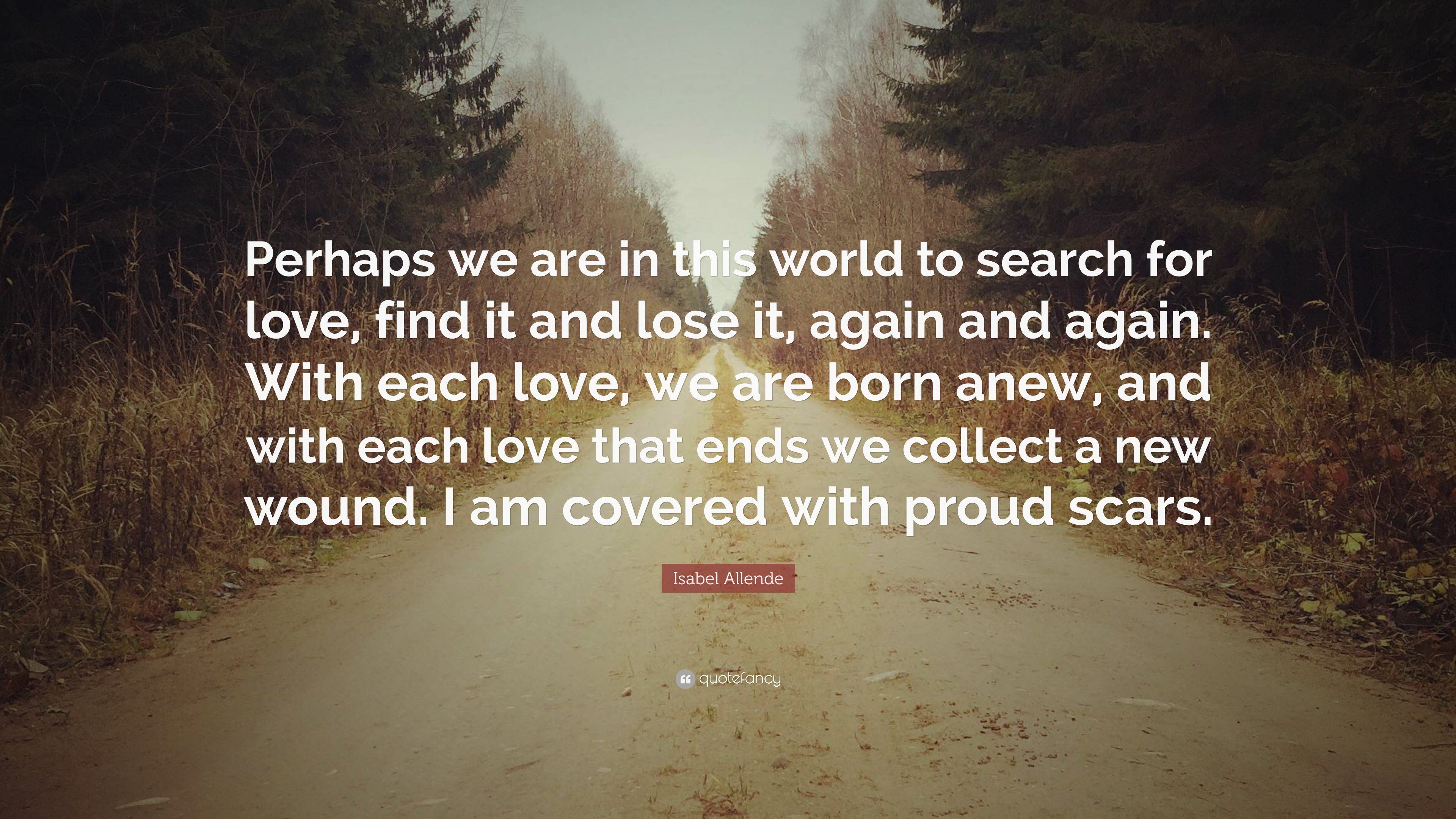 "Finding New Love Quotes Isabel Allende Quote ""Perhaps We Are In This World To Search For"