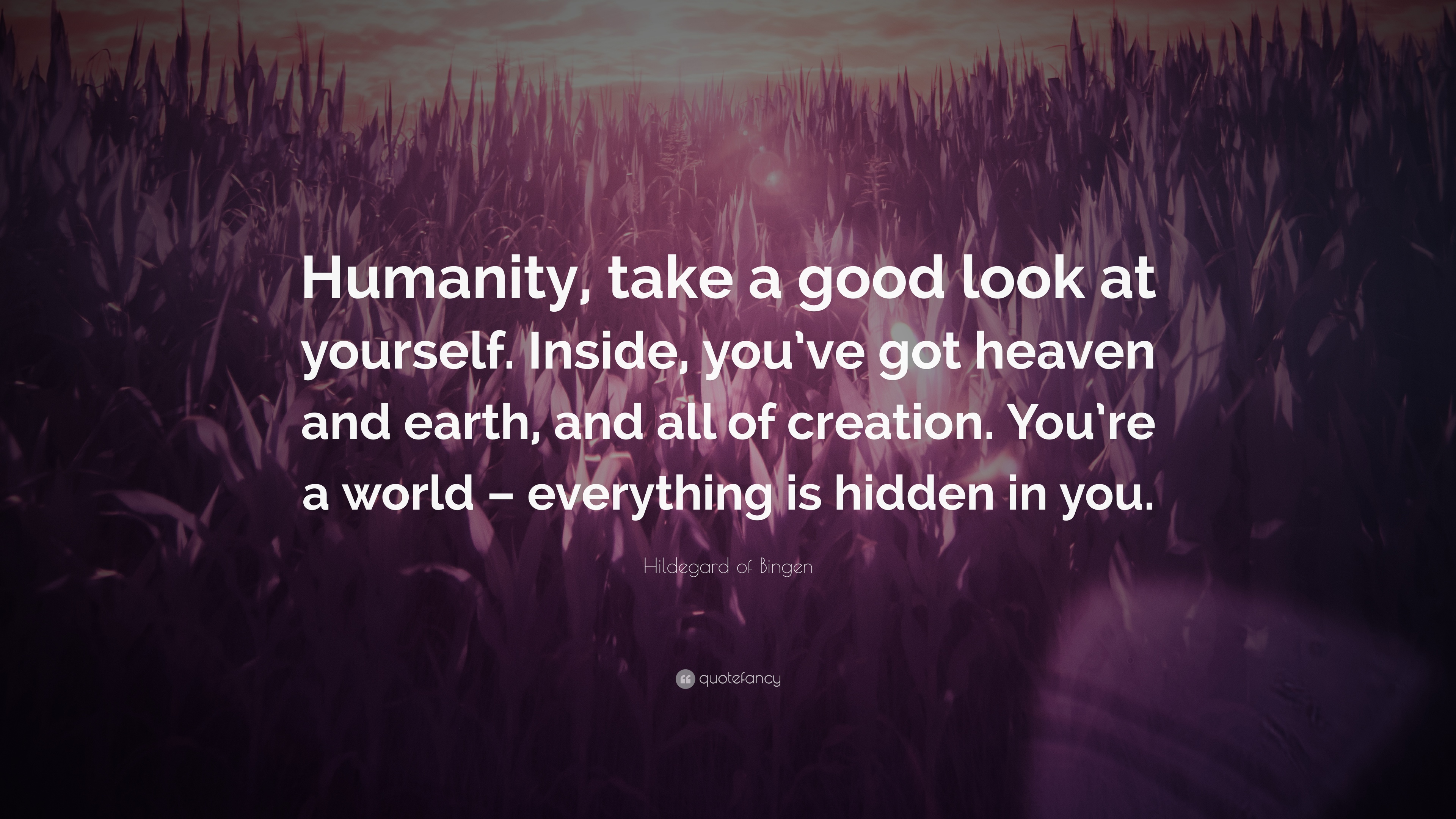 "Hildegard Of Bingen Quote: ""Humanity, Take A Good Look At"