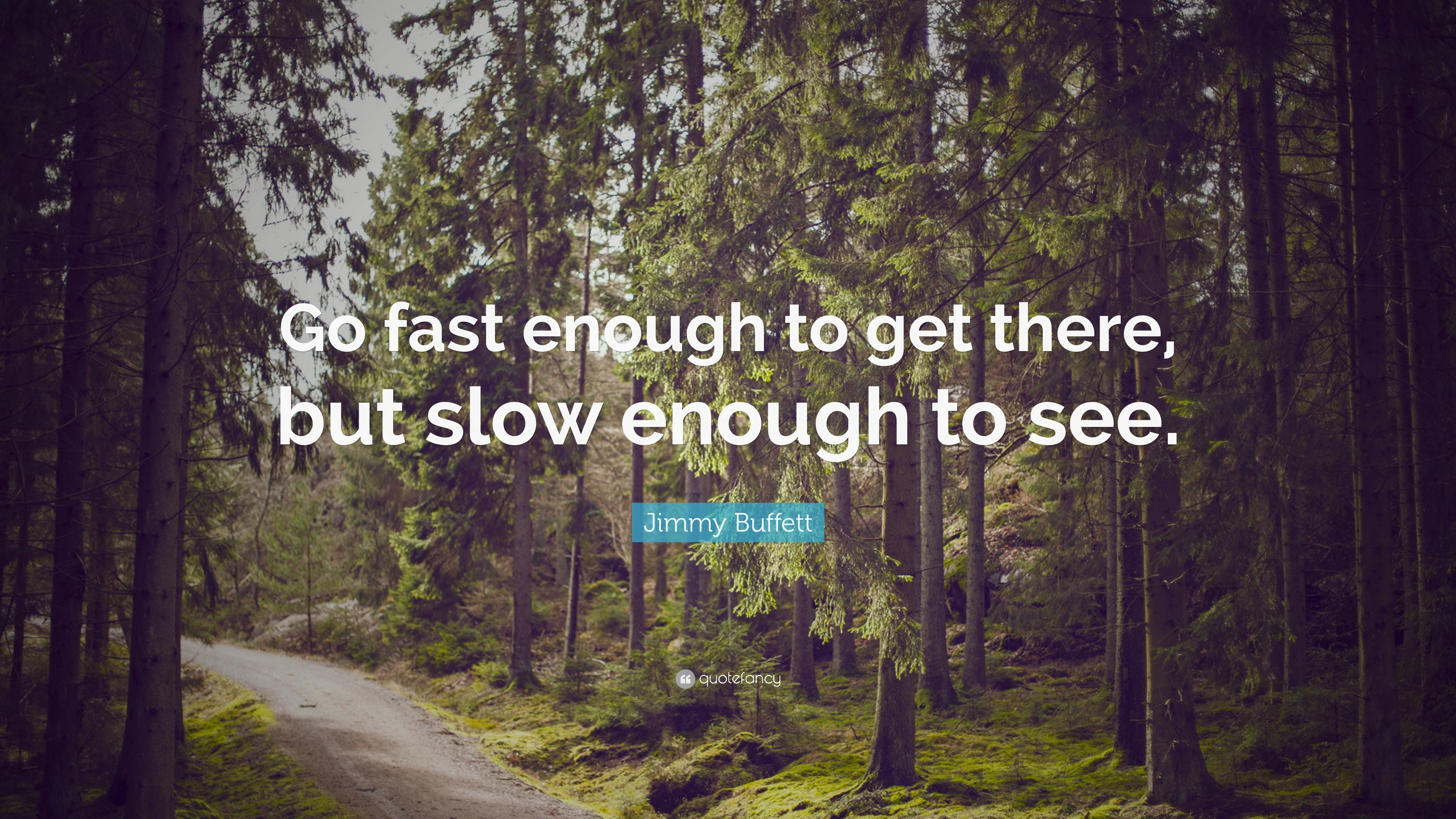 Image result for Go fast enough to get there, but slow enough to see
