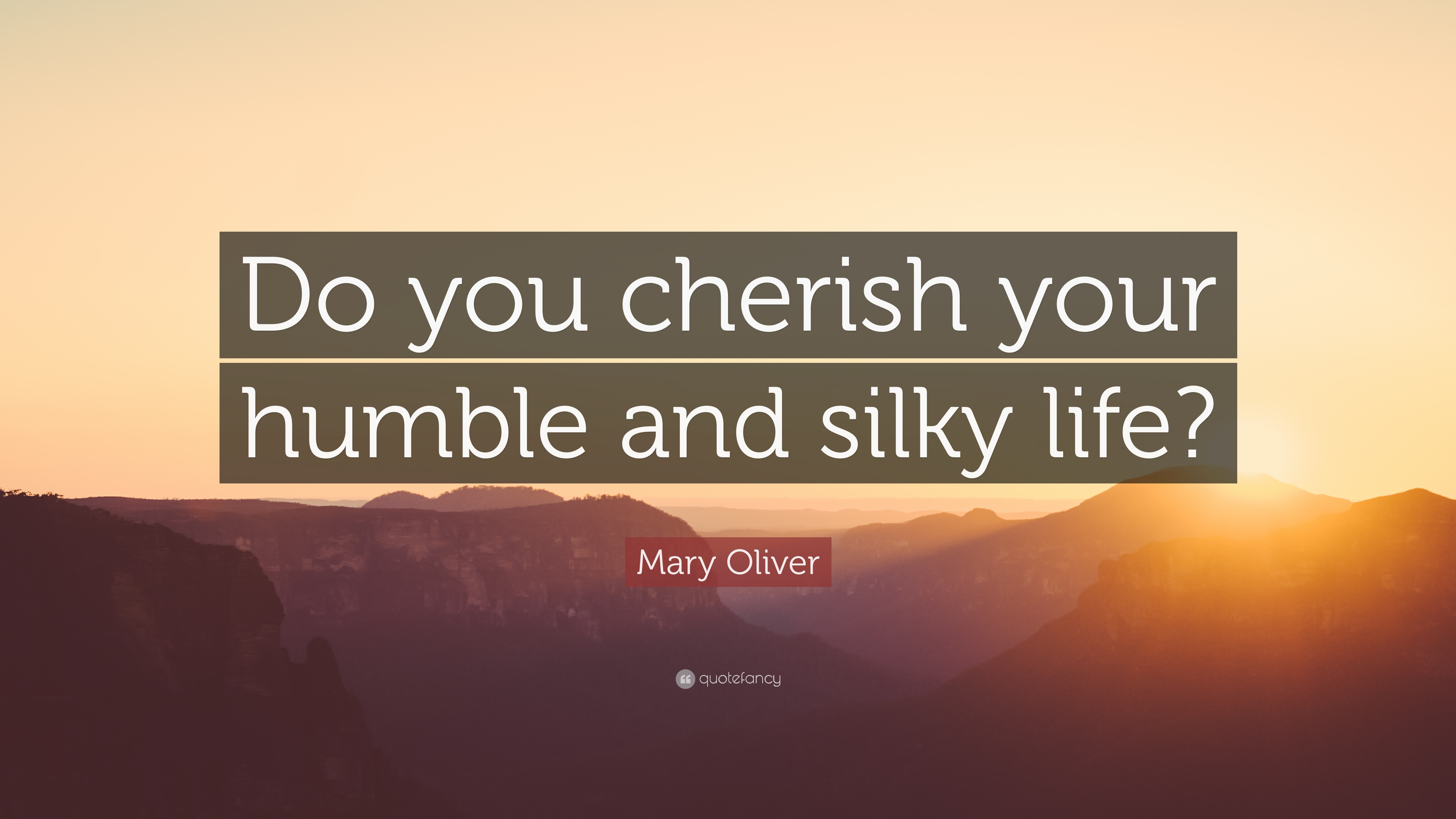 "Cherish Your Life Quotes Enchanting Mary Oliver Quote ""Do You Cherish Your Humble And Silky Life"" 7"