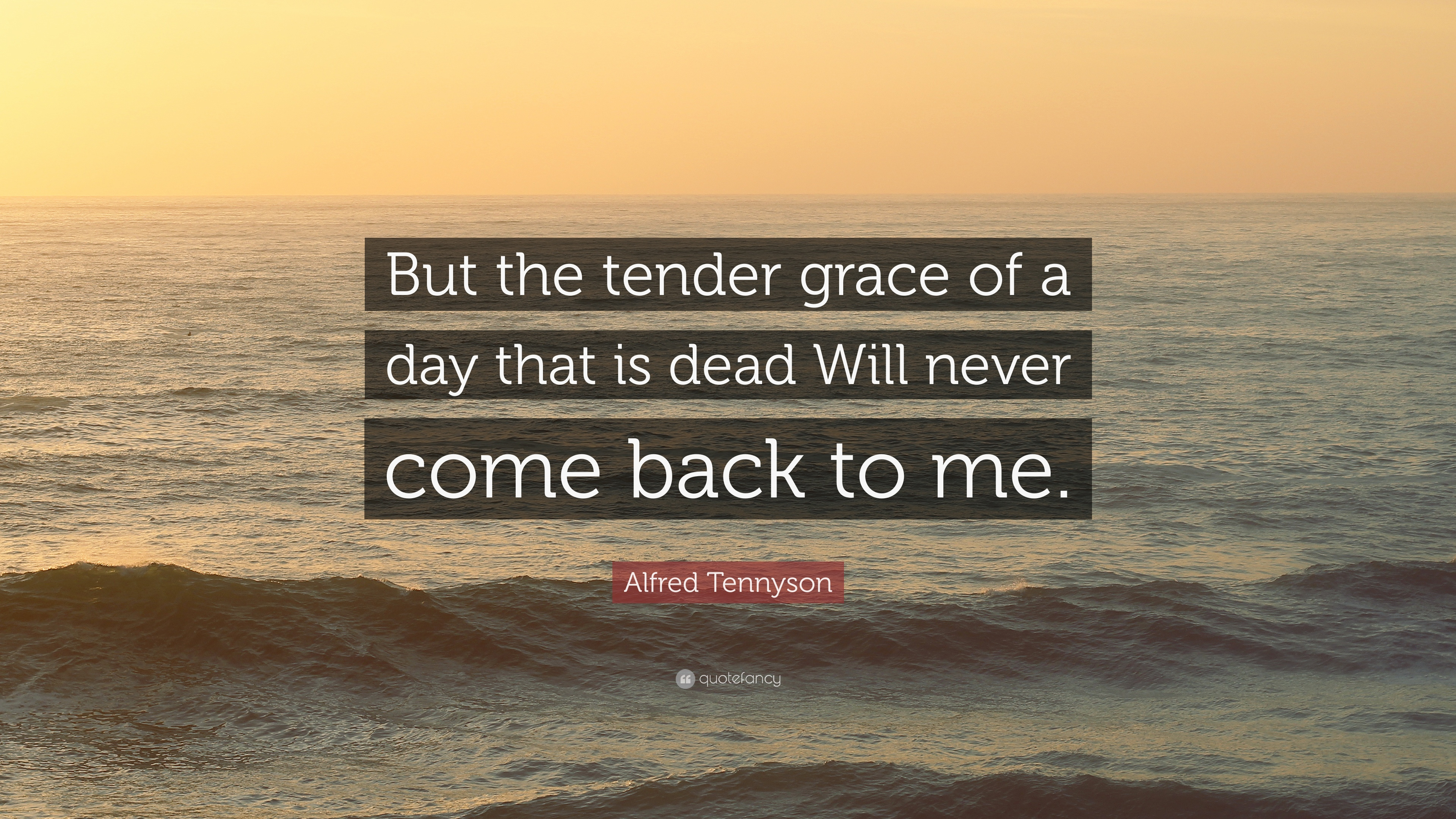 """Alfred Tennyson Quote: """"But The Tender Grace Of A Day That"""