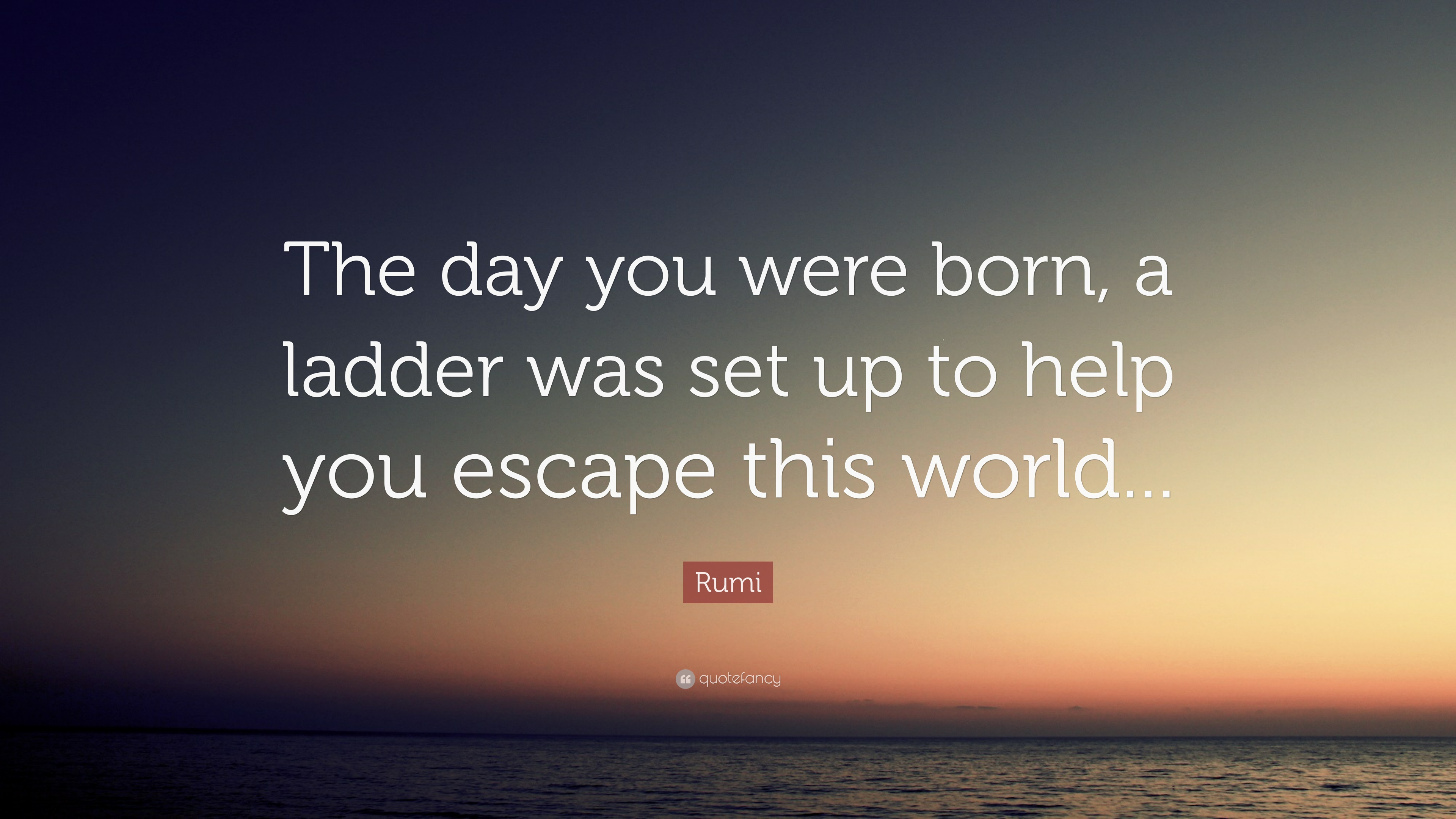 Rumi Quote The Day You Were Born A Ladder Was Set Up To Help You