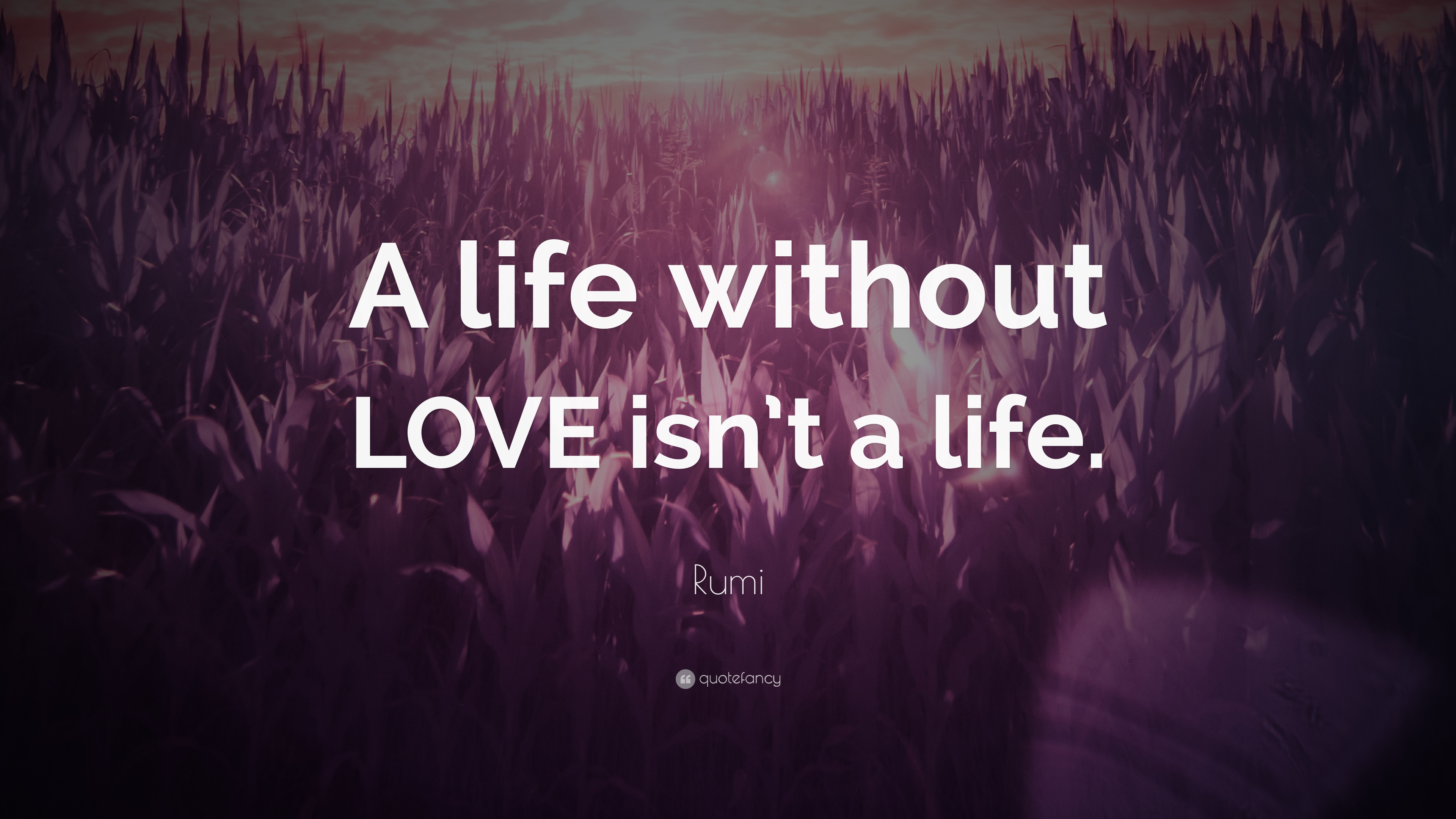 "Life Without Love Quotes Rumi Quote ""A Life Without Love Isn't A Life."" 12 Wallpapers"