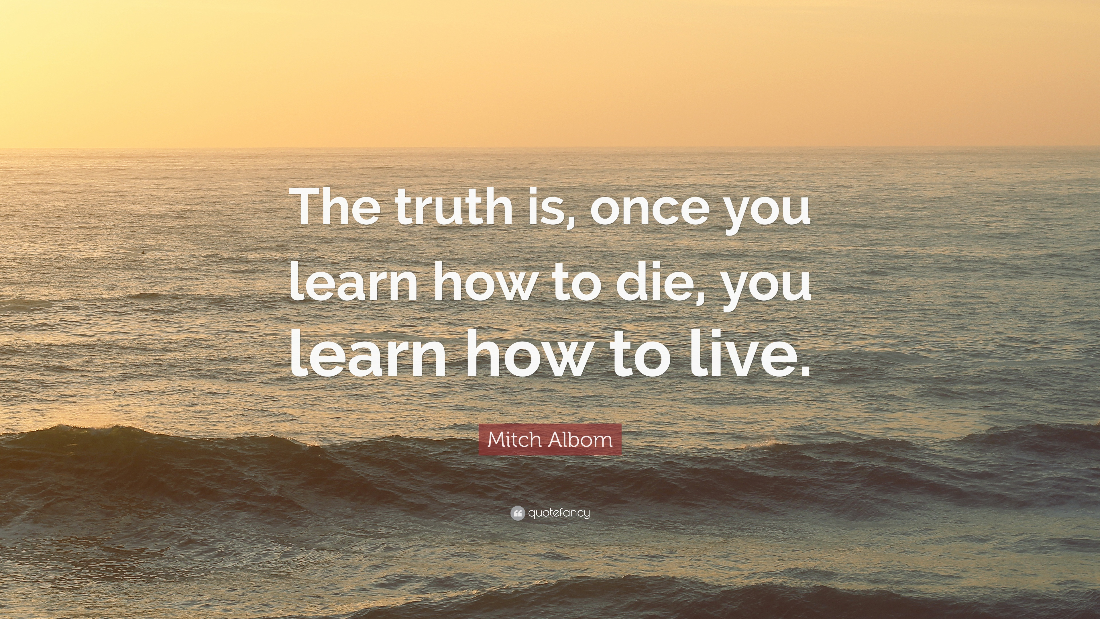 """Mitch Albom Quote: """"The truth is, once you learn how to ..."""