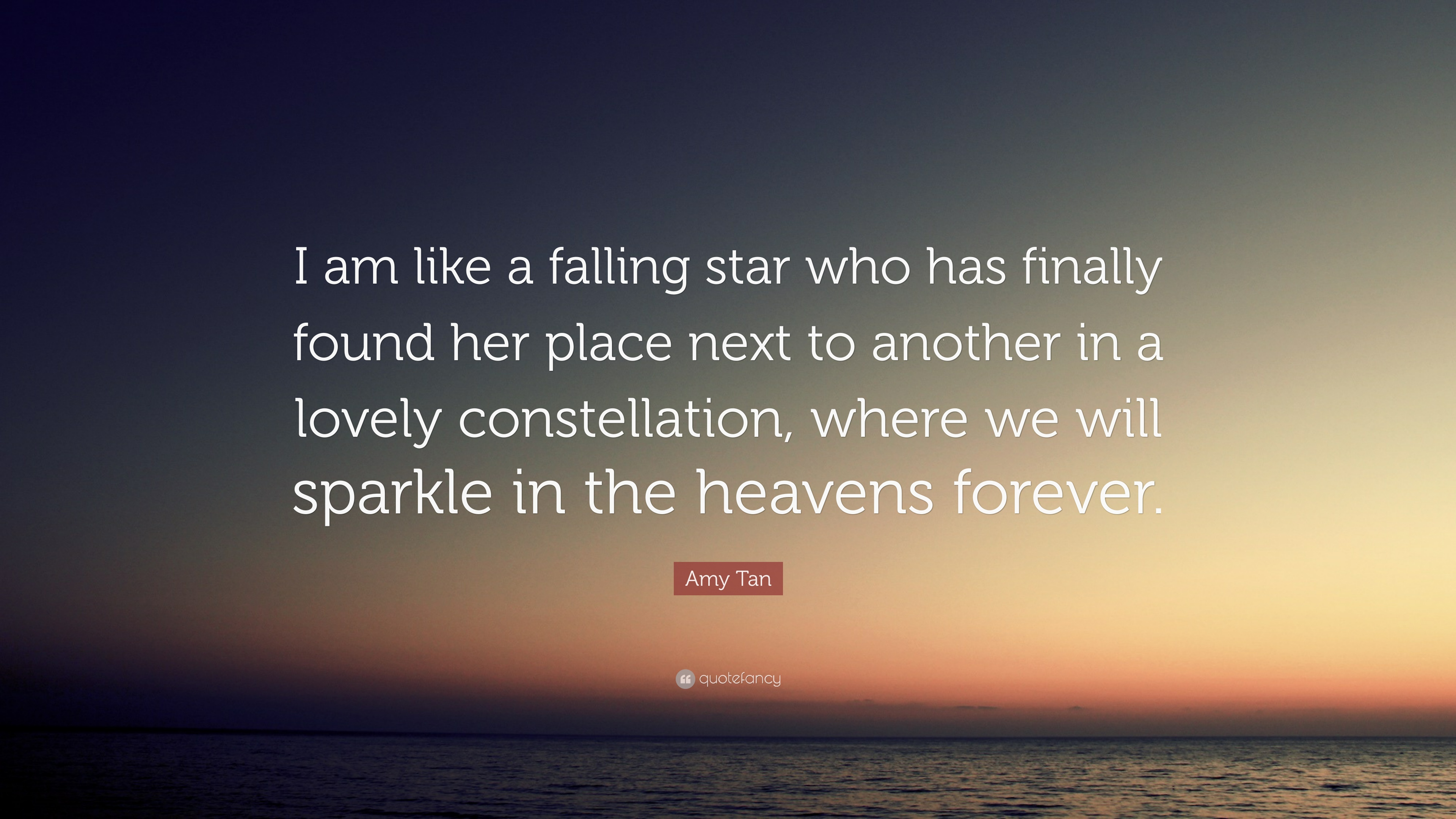 """Amy Tan Quote: """"I Am Like A Falling Star Who Has Finally"""