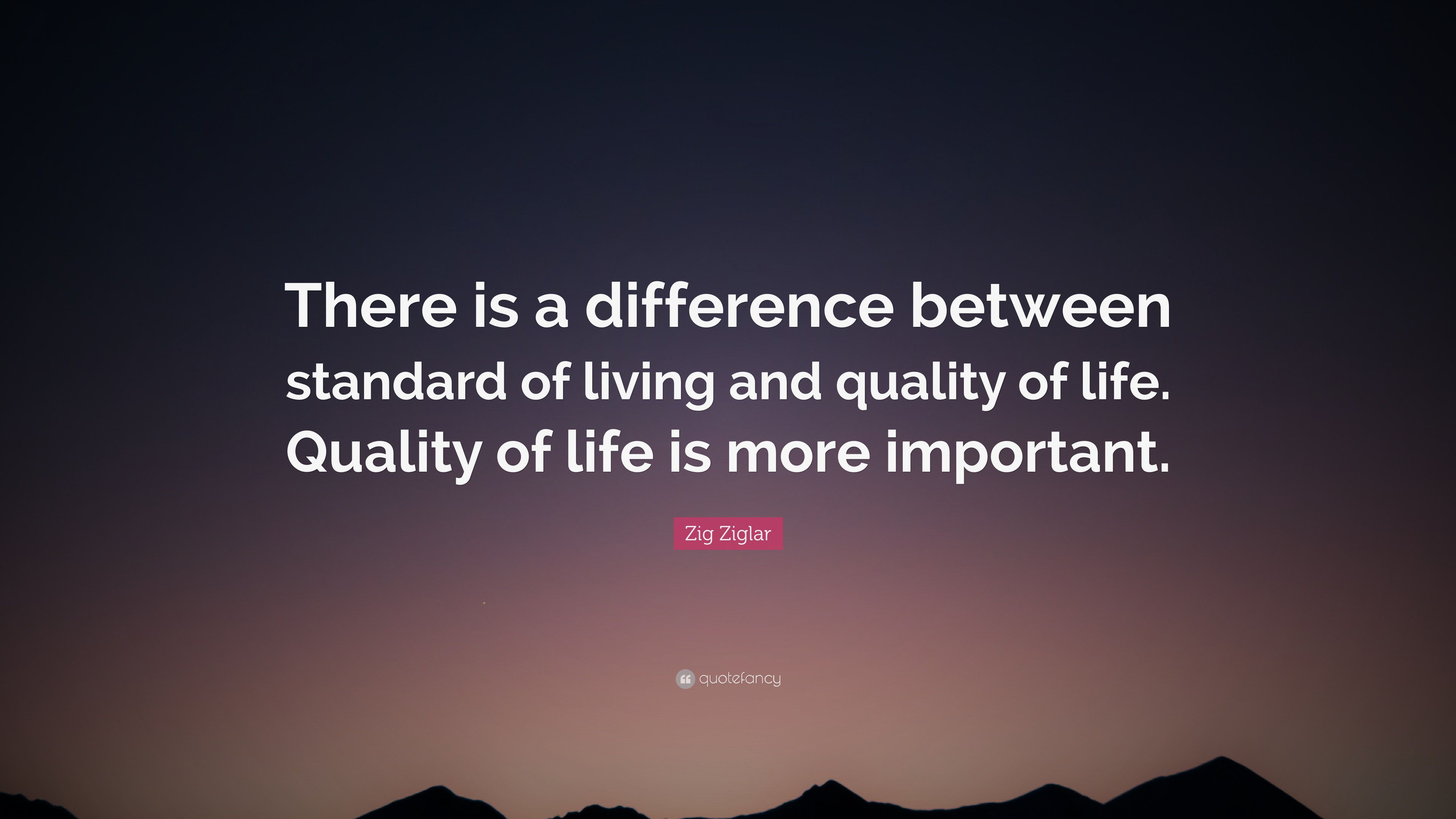 Zig Ziglar Quote There Is A Difference Between Standard Of Living
