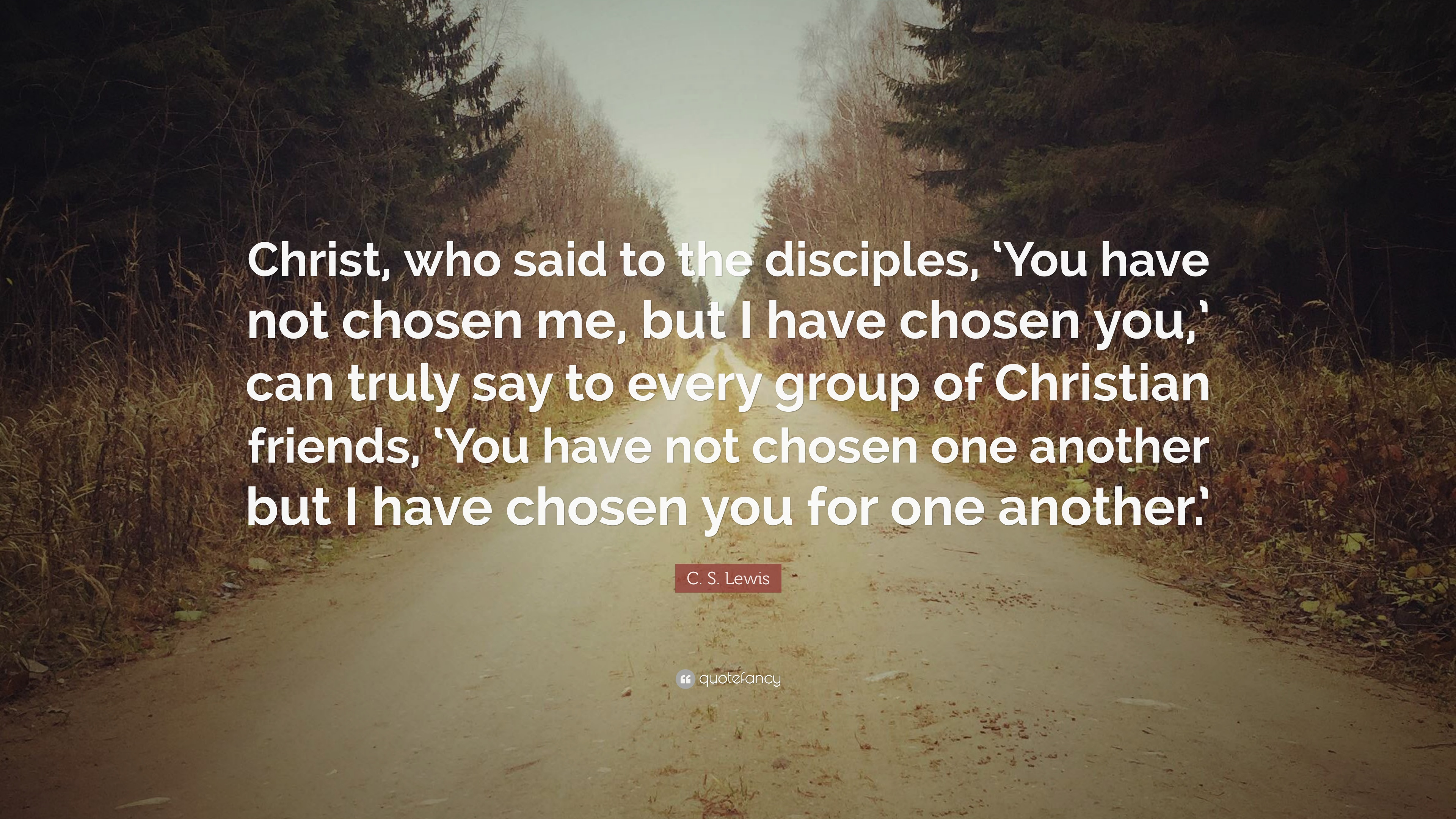 C S Lewis Quote Christ Who Said To The Disciples You Have Not Chosen Me But I Have Chosen You Can Truly Say To Every Group Of Chri 10 Wallpapers Quotefancy