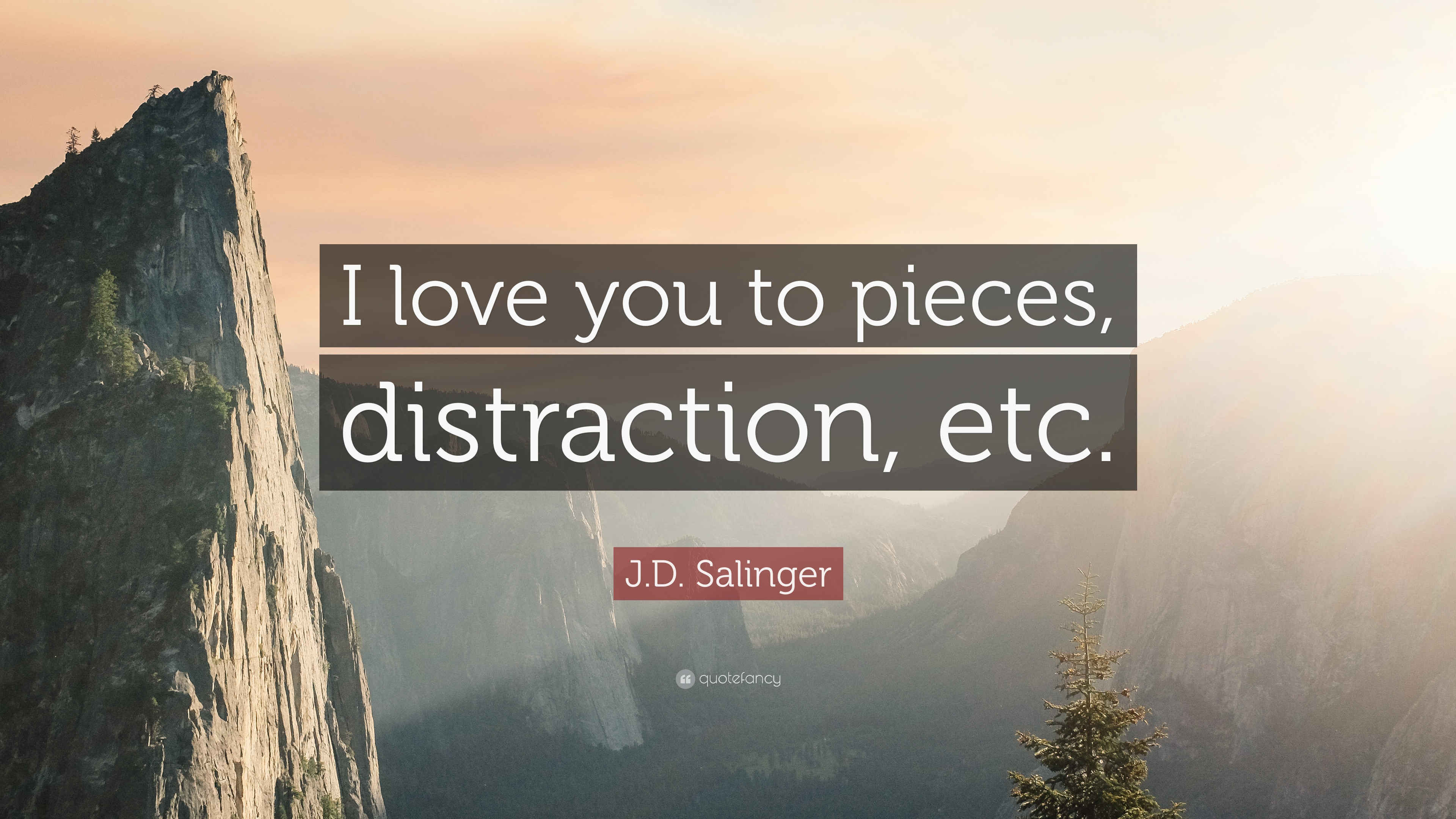 Jd Salinger Quote I Love You To Pieces Distraction Etc 9