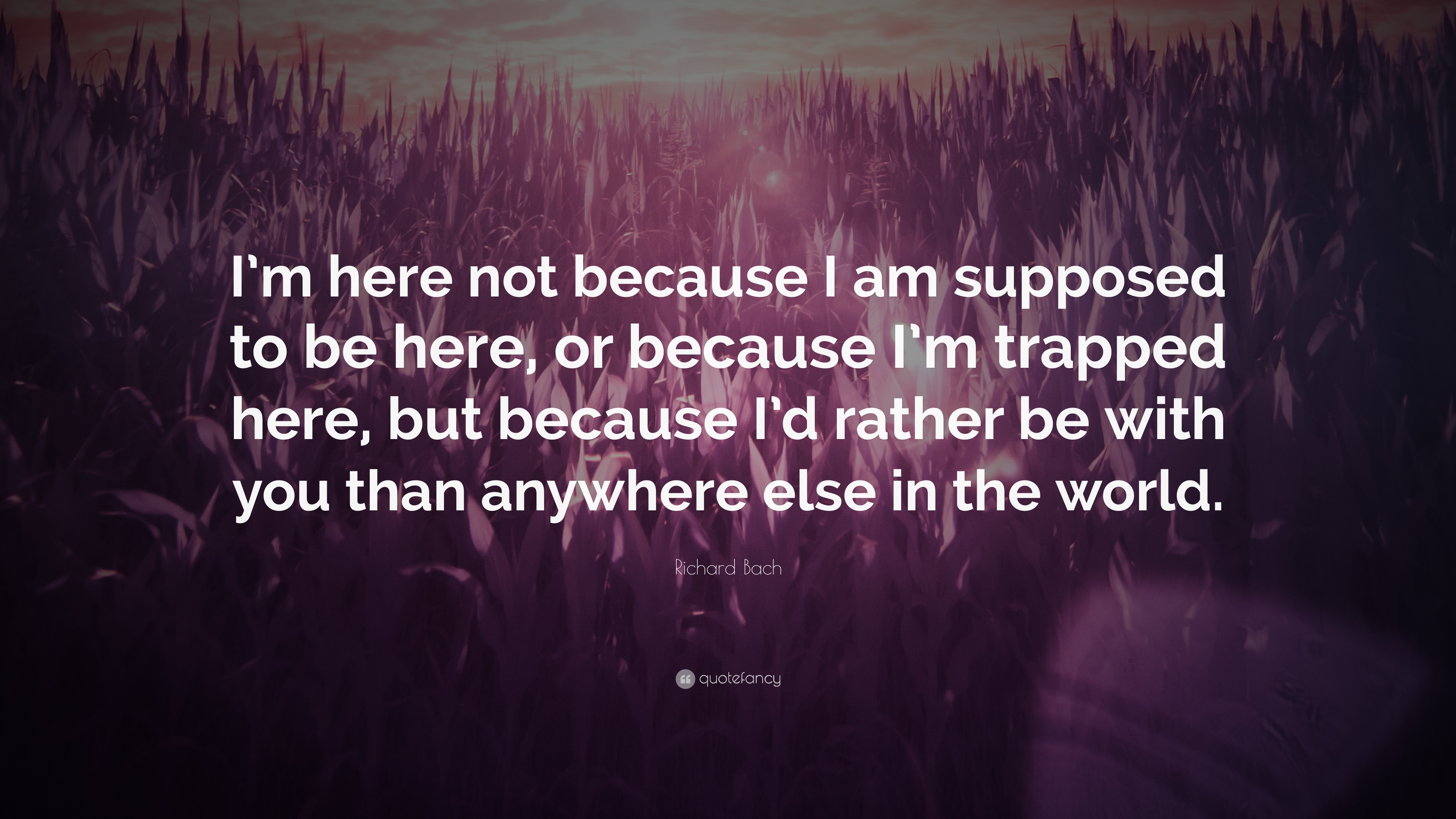 "Richard Bach Quote: ""I'm Here Not Because I Am Supposed To"