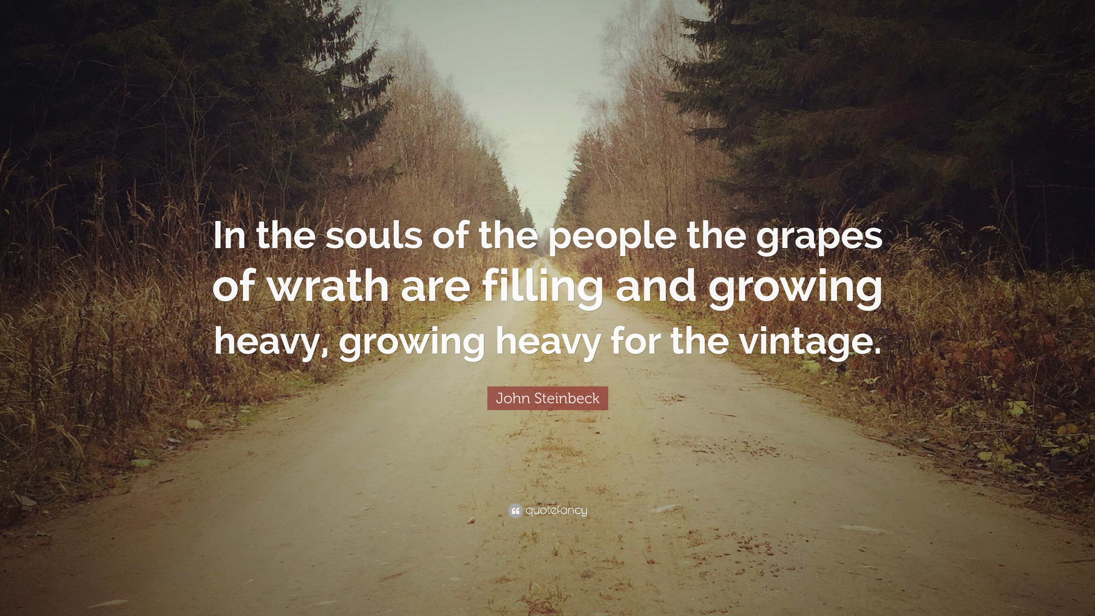 "Grapes Of Wrath Quotes John Steinbeck Quote ""In The Souls Of The People The Grapes Of ."
