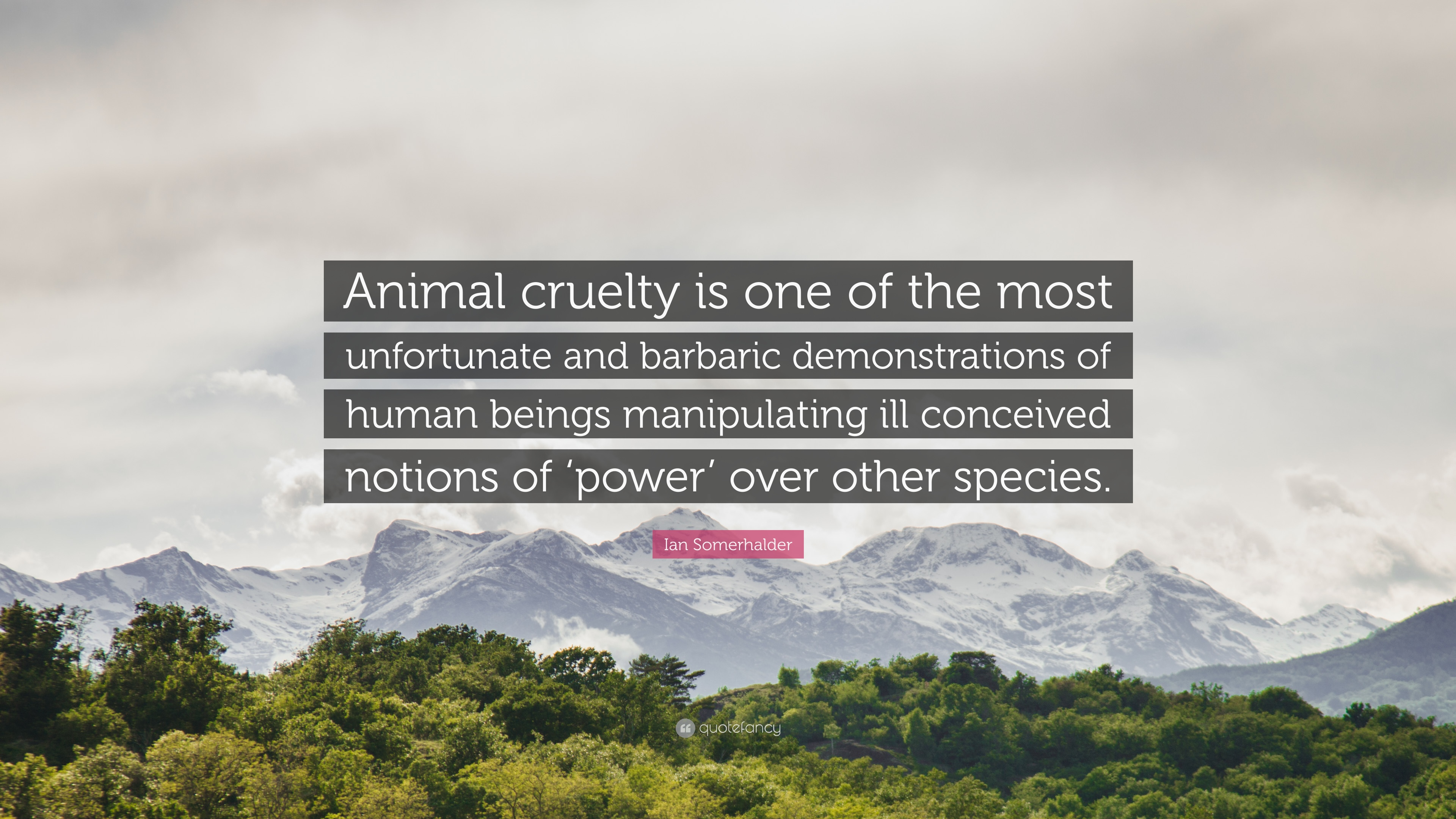 """Animal Cruelty Quotes Ian Somerhalder Quote """"Animal Cruelty Is One Of The Most"""