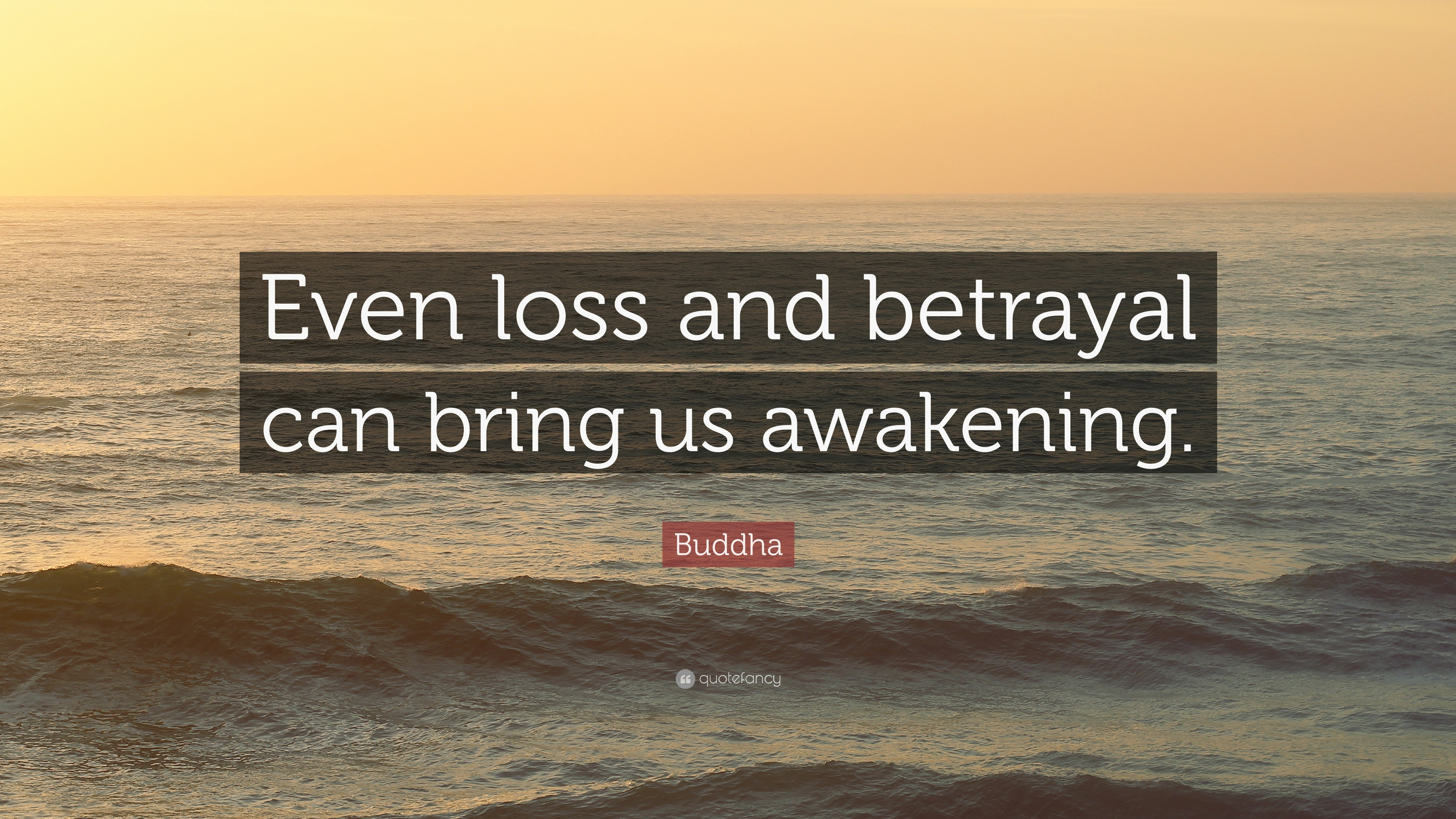Buddha Quote Even Loss And Betrayal Can Bring Us Awakening 12