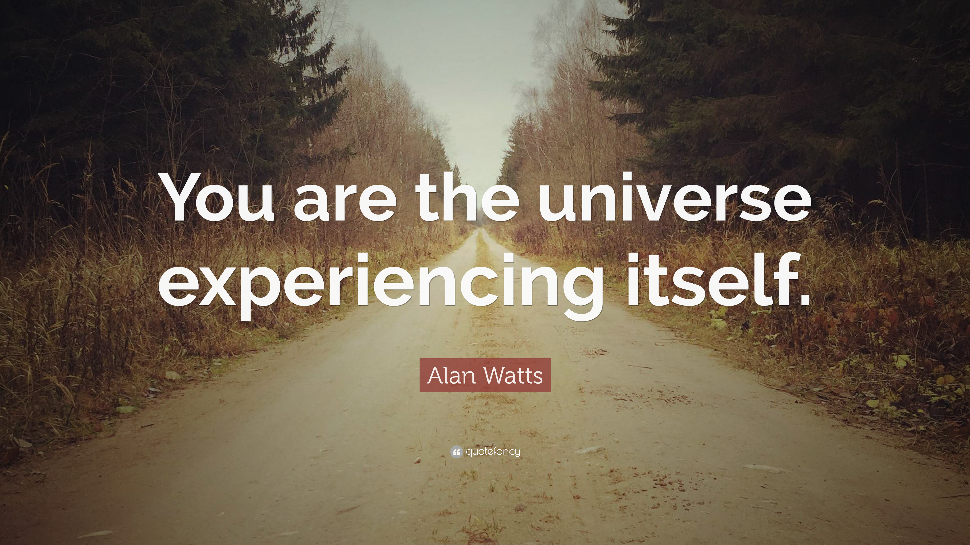 Alan Watts Quote   U201cyou Are The Universe Experiencing
