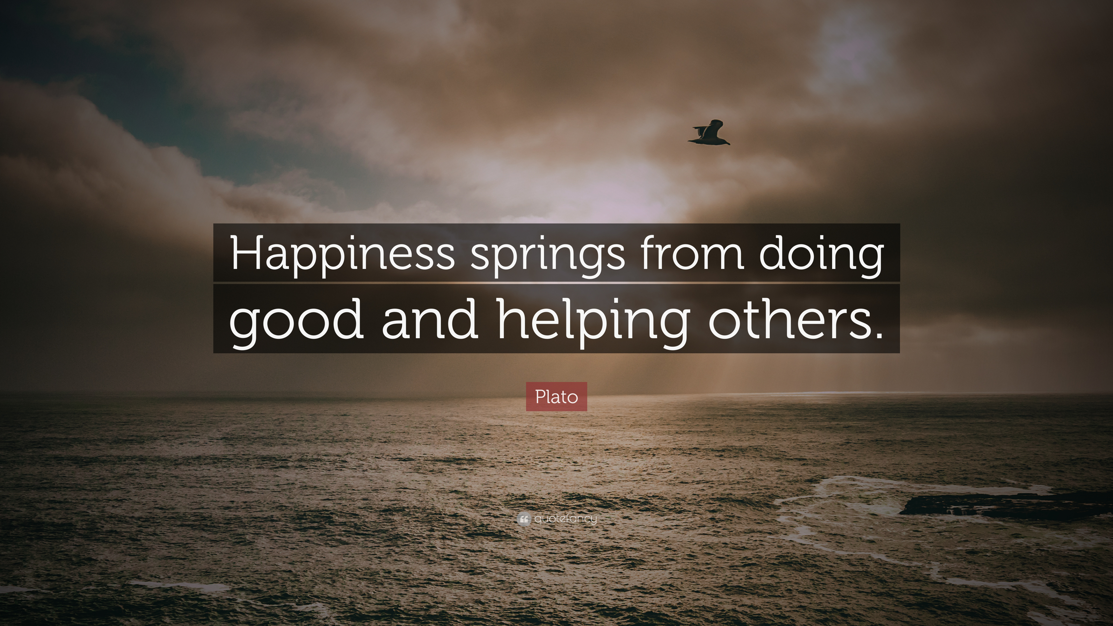 "Plato Quote: ""Happiness Springs From Doing Good And"