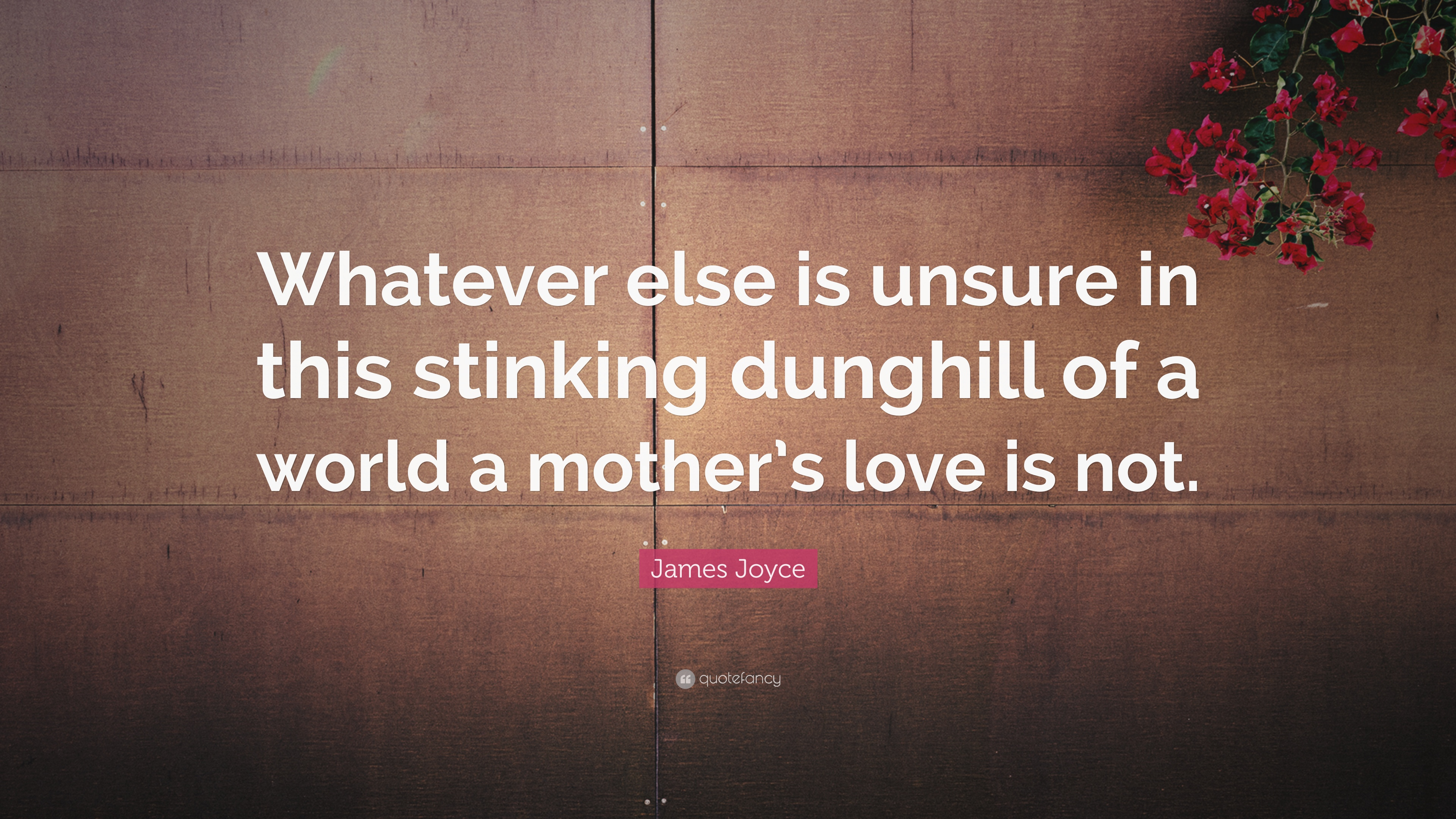 "Mothers Love Quotes James Joyce Quote ""Whatever Else Is Unsure In This Stinking"