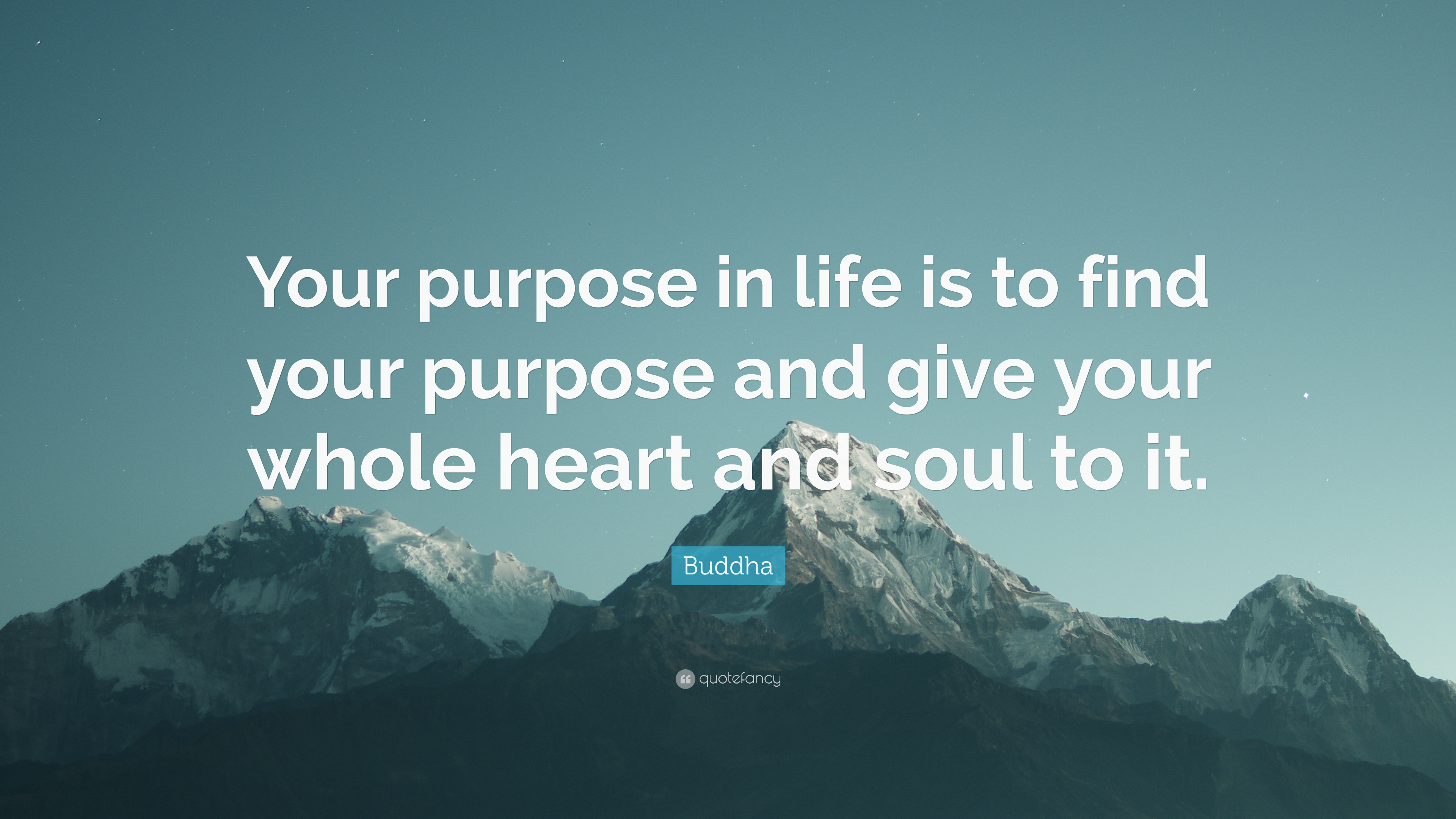 Quotes Purpose Of Life 100  Quote Life Purpose   Quotes On Life Purpose Quotes About