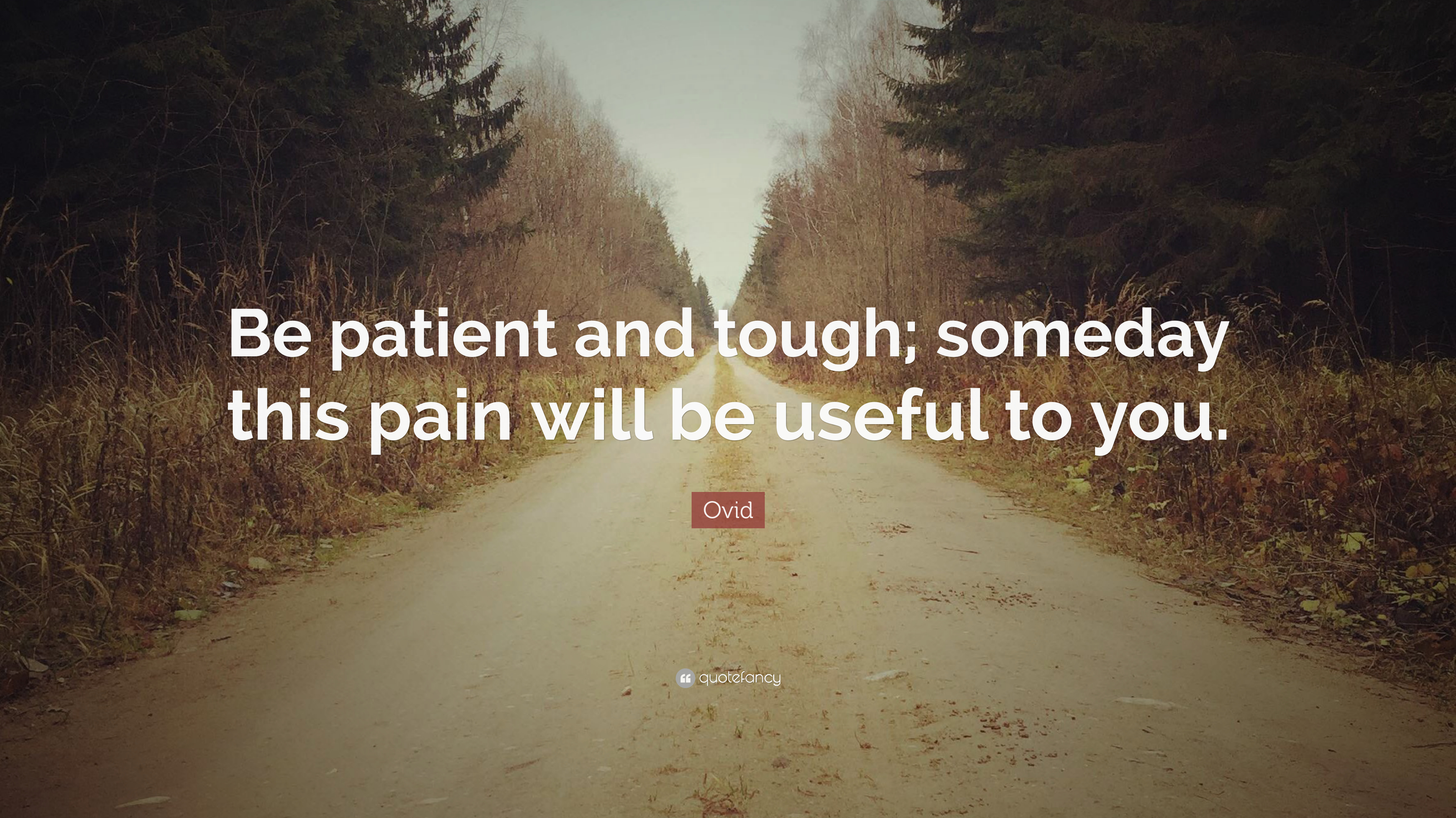 Ovid Quote Be Patient And Tough Someday This Pain Will Be Useful