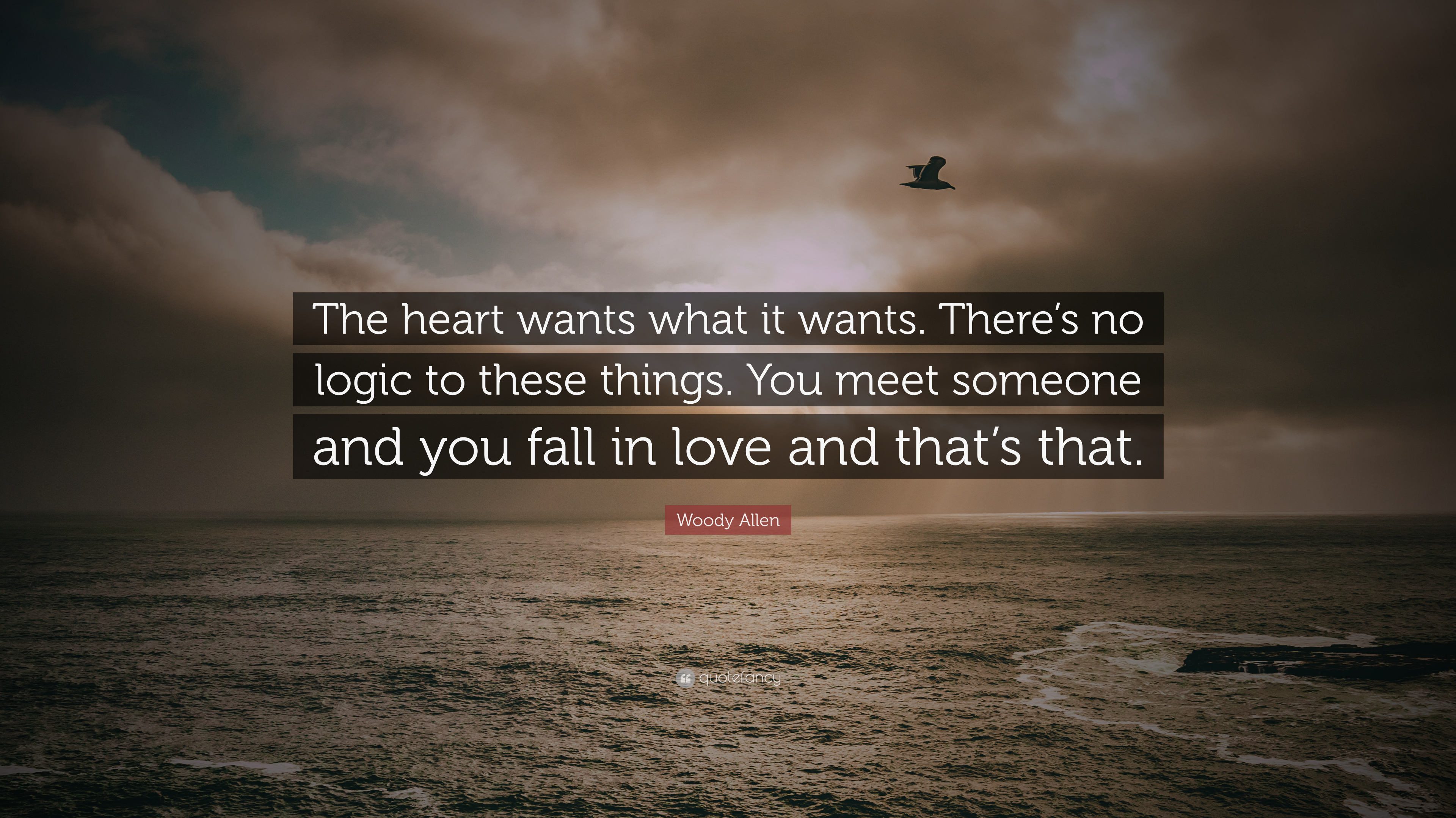 Woody Allen Quote The Heart Wants What It Wants Theres No Logic