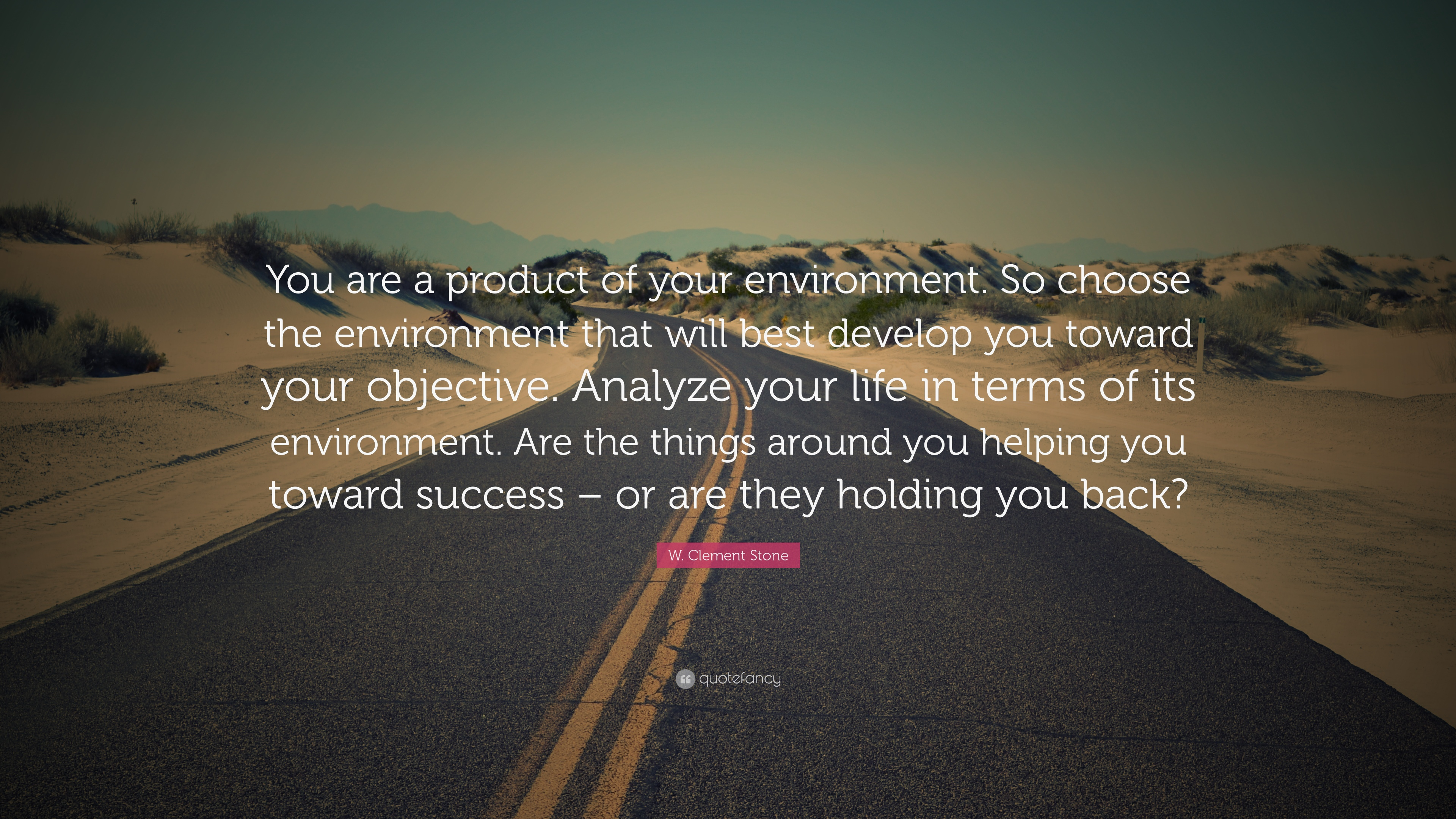 W Clement Stone Quote You Are A Product Of Your Environment So