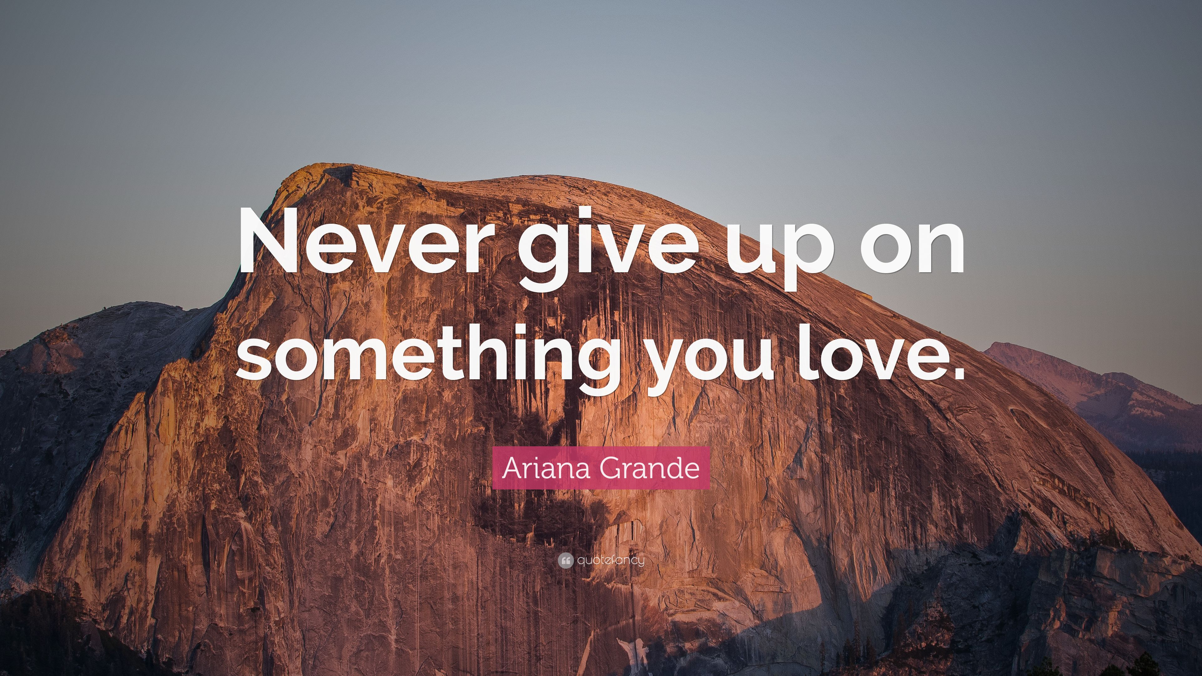 Ariana Grande Quote: Never give up on something you love