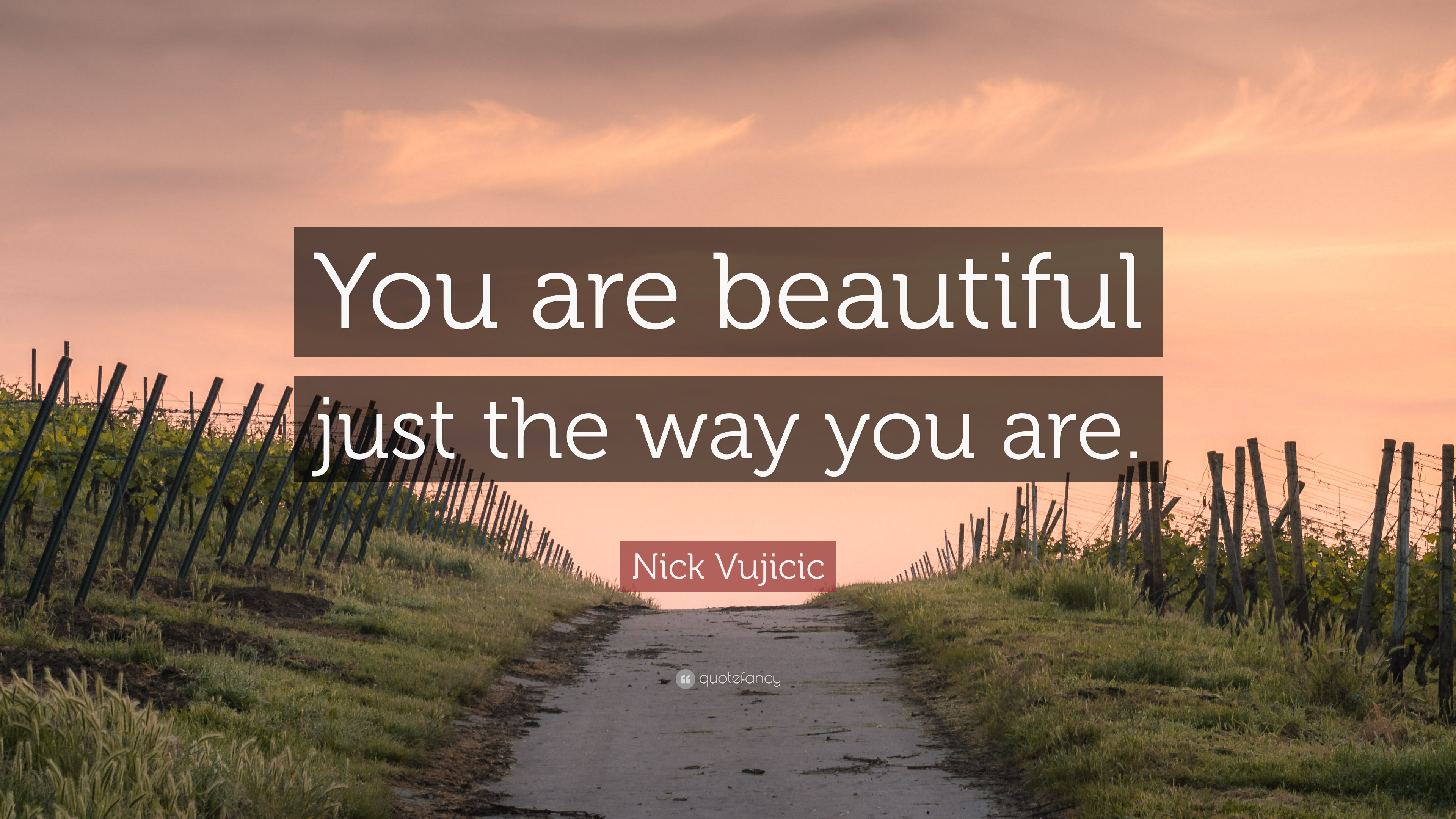 Nick Vujicic Quote: You are beautiful just the way you
